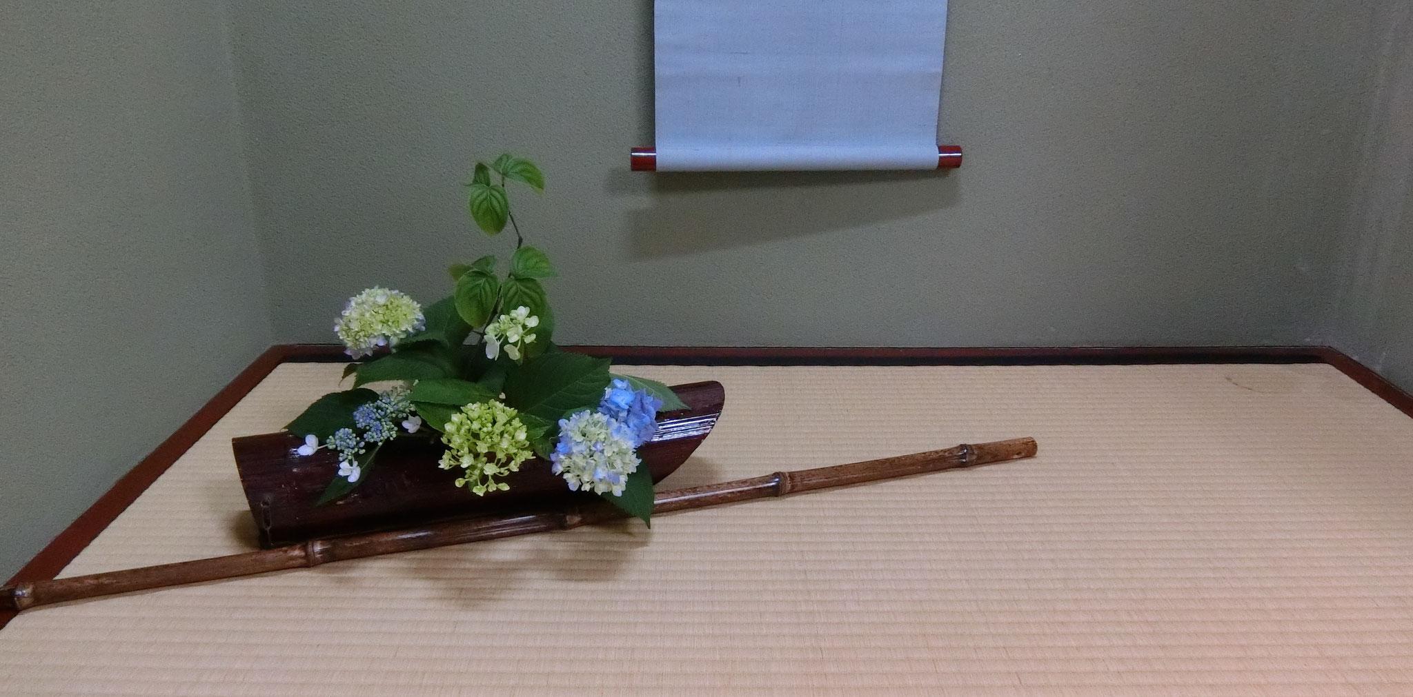 入船(接岸)紫陽花