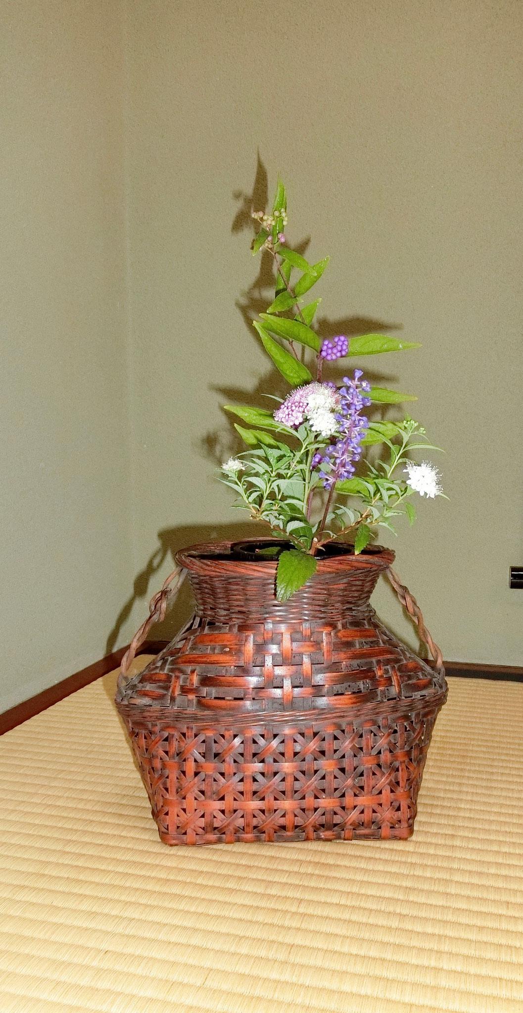 紫式部、藪蘭、下野