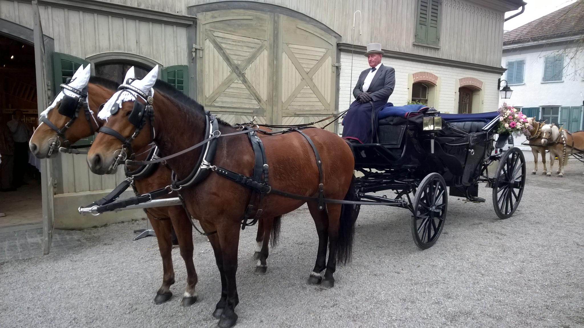 Die Hochzeitskutsche wartet nach dem Apéro auf ihre Gäste