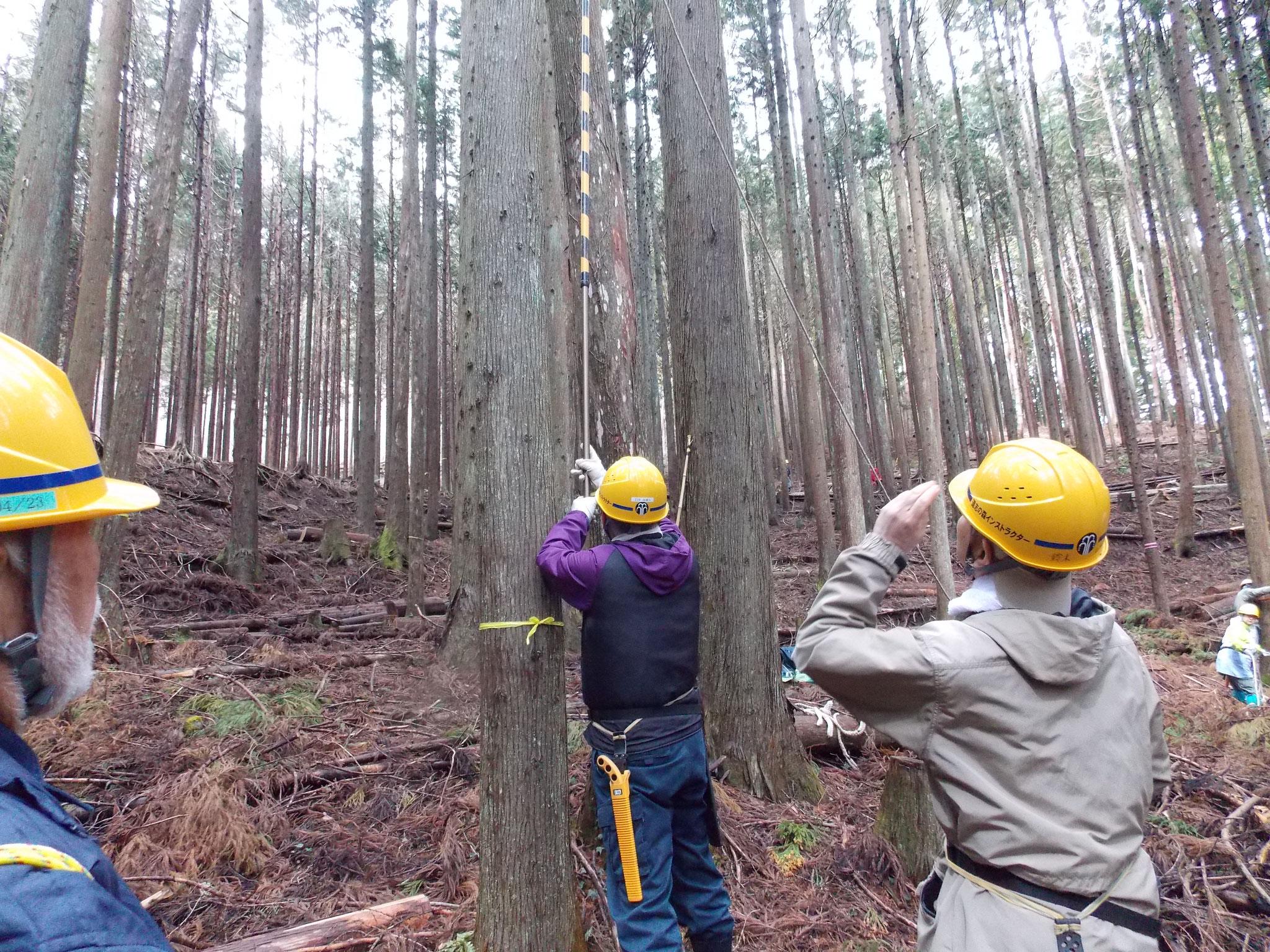 係かり木状態の処理にチャレンジ