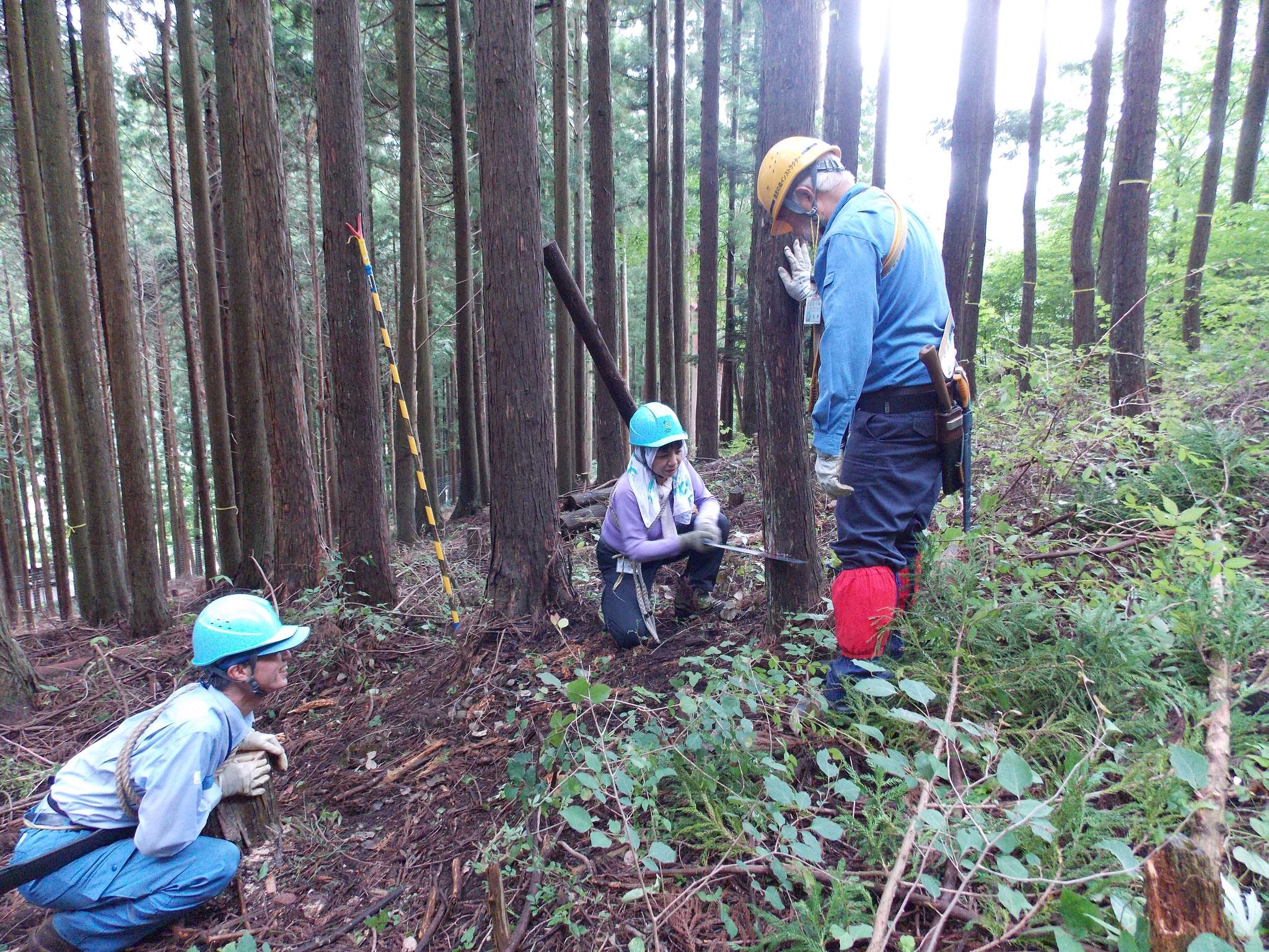 道恵さん受け口作業を、水木さんが鋸の水平か・方向の確認