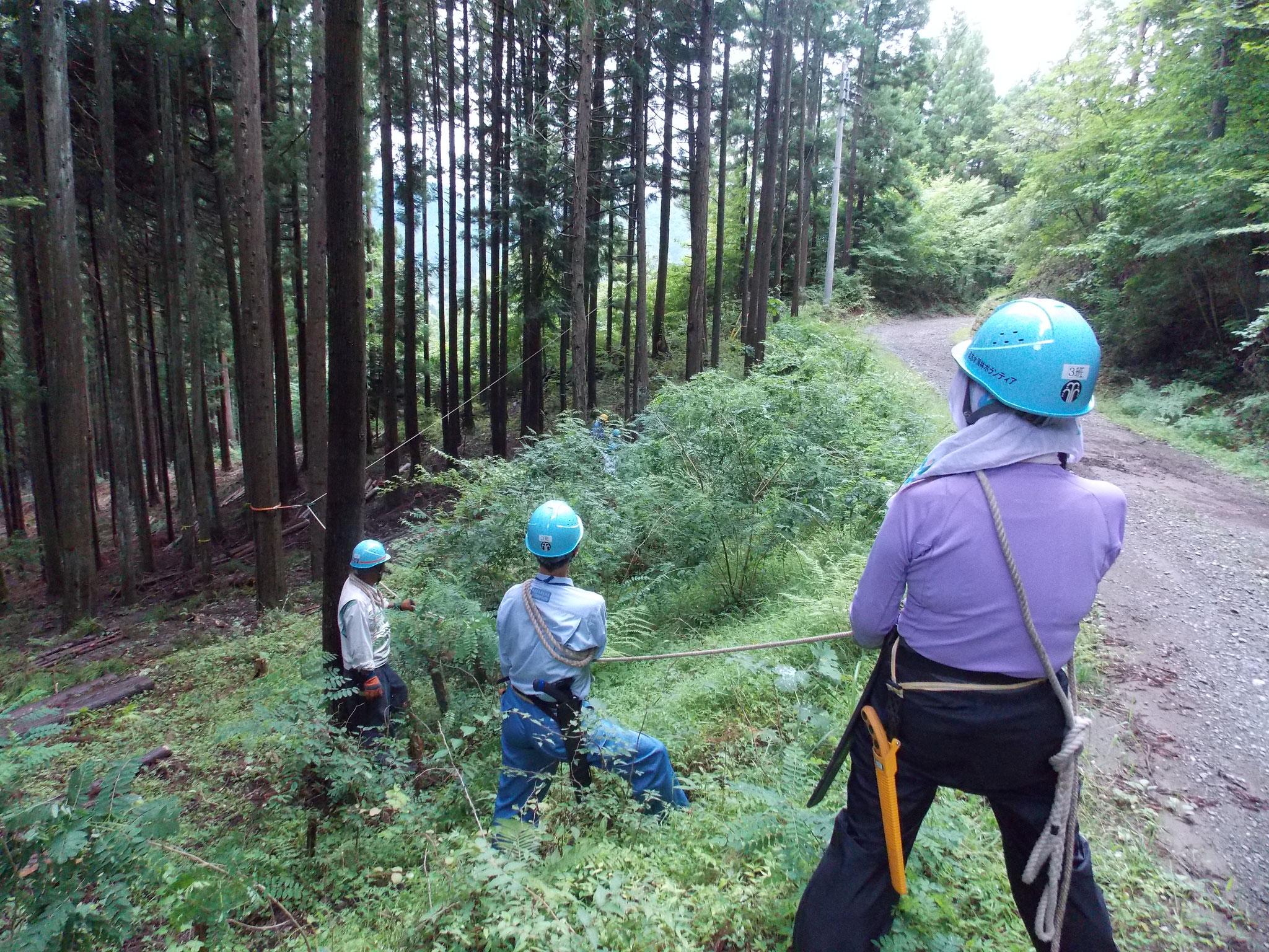 加藤めおとチームのサポートチーム(元気〇の道恵さん・水木さん)がロープ引き