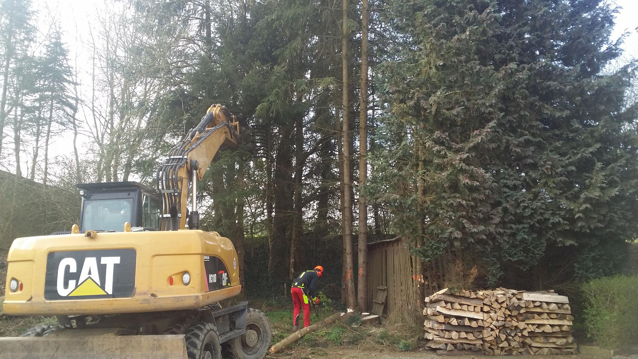Lassen Sie Baumfallungen Von Uns Durchfuhren Das Schont Ihre Gesundheit Und Schutzt Ihr Eigentum Denn Durch Unachtsames Fallen Der Baume