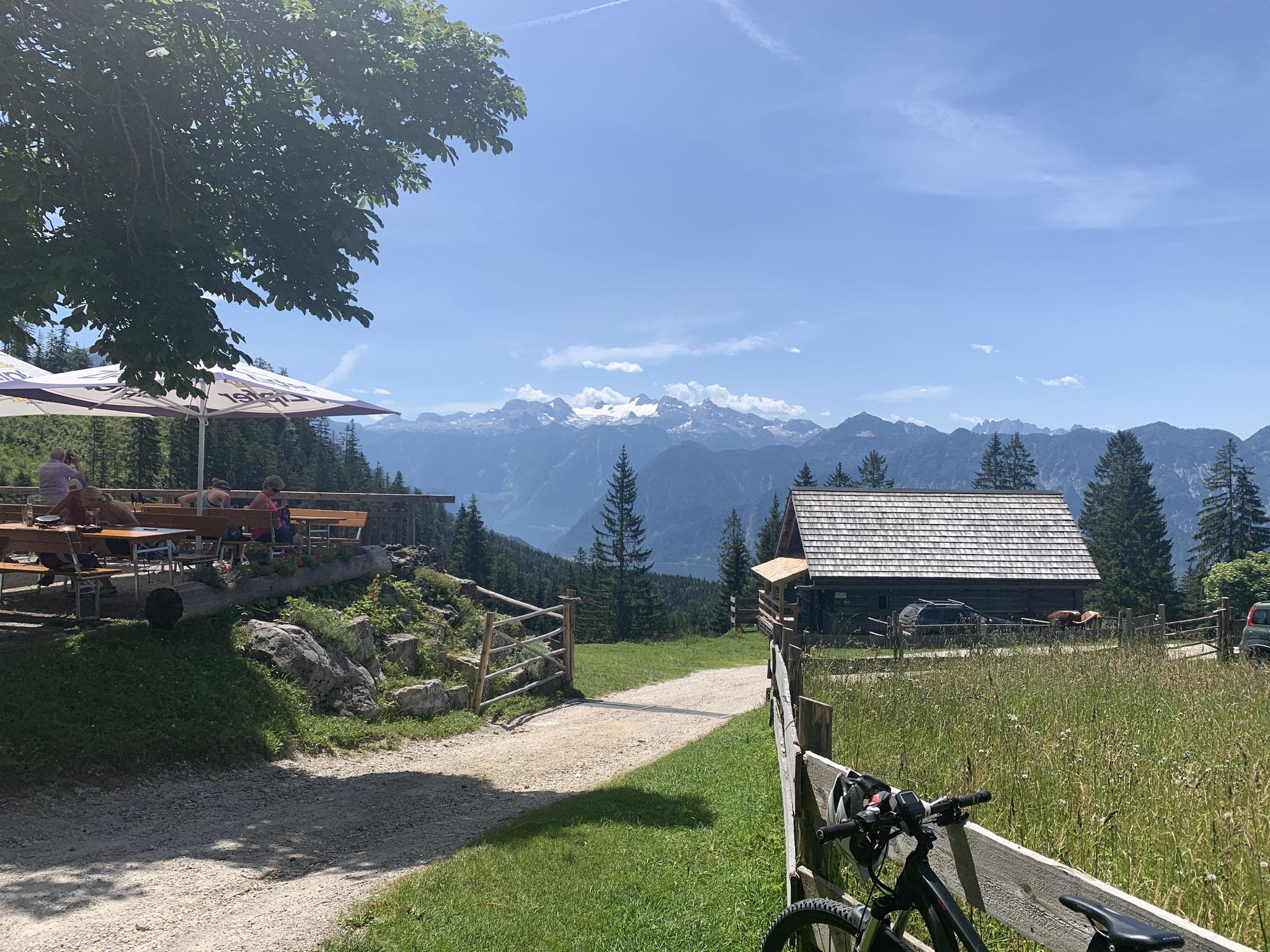 Hütteneckalm Blick zum Dachstein