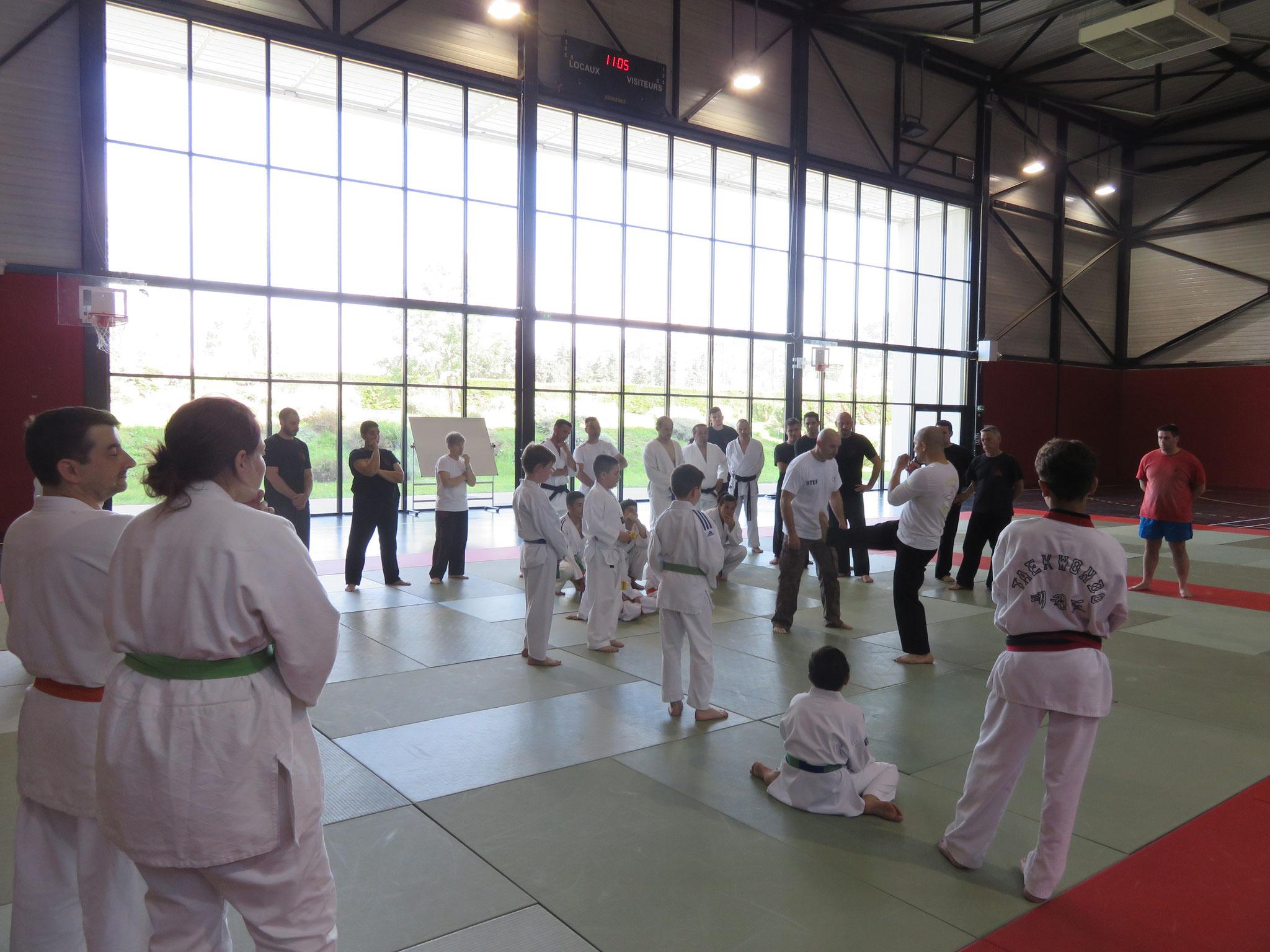 stage FFST NICE ( krav/penchak multi disicplines) avril 2016