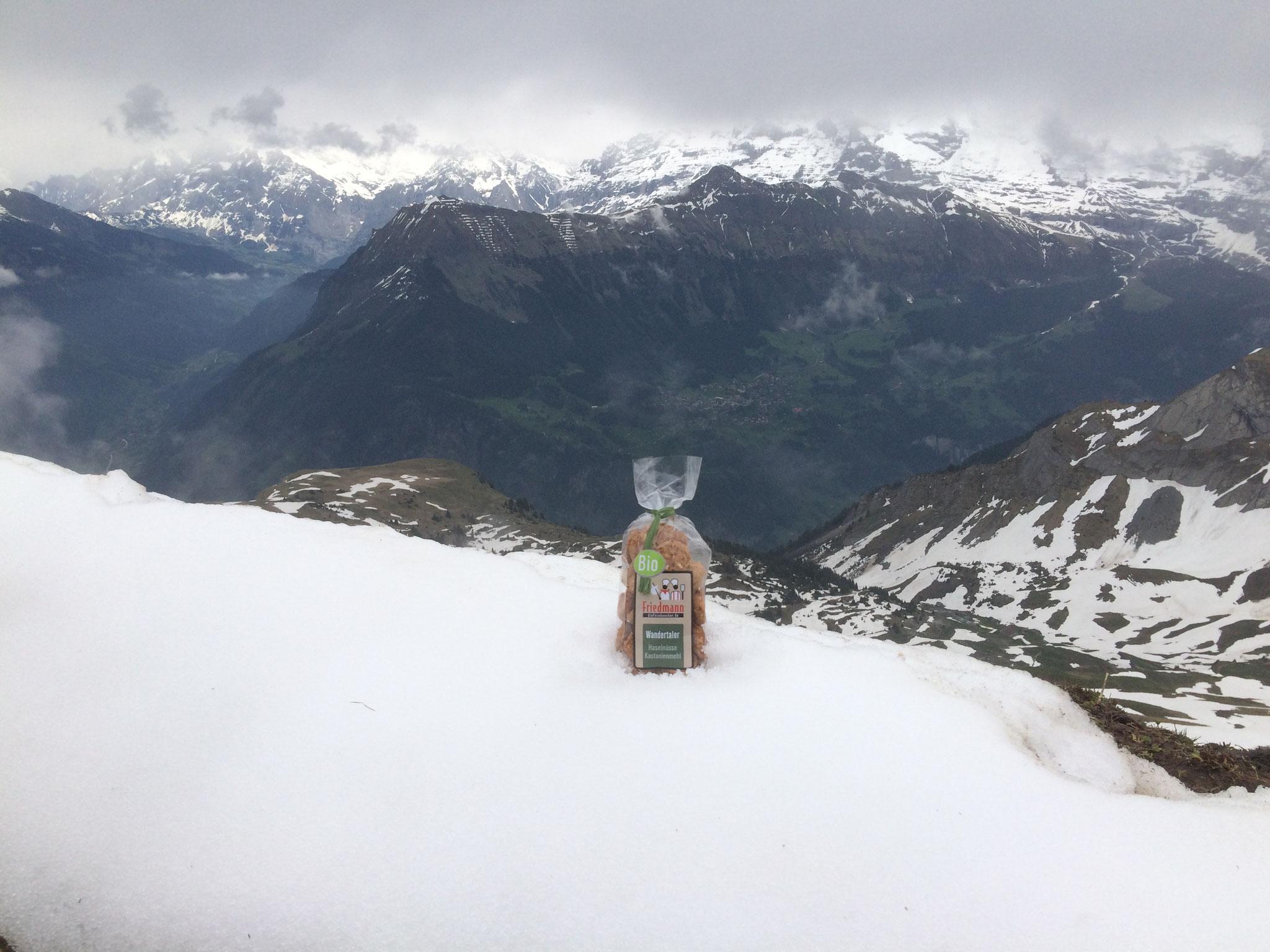 Europa Schweiz Berner Oberland am Suleck 2018