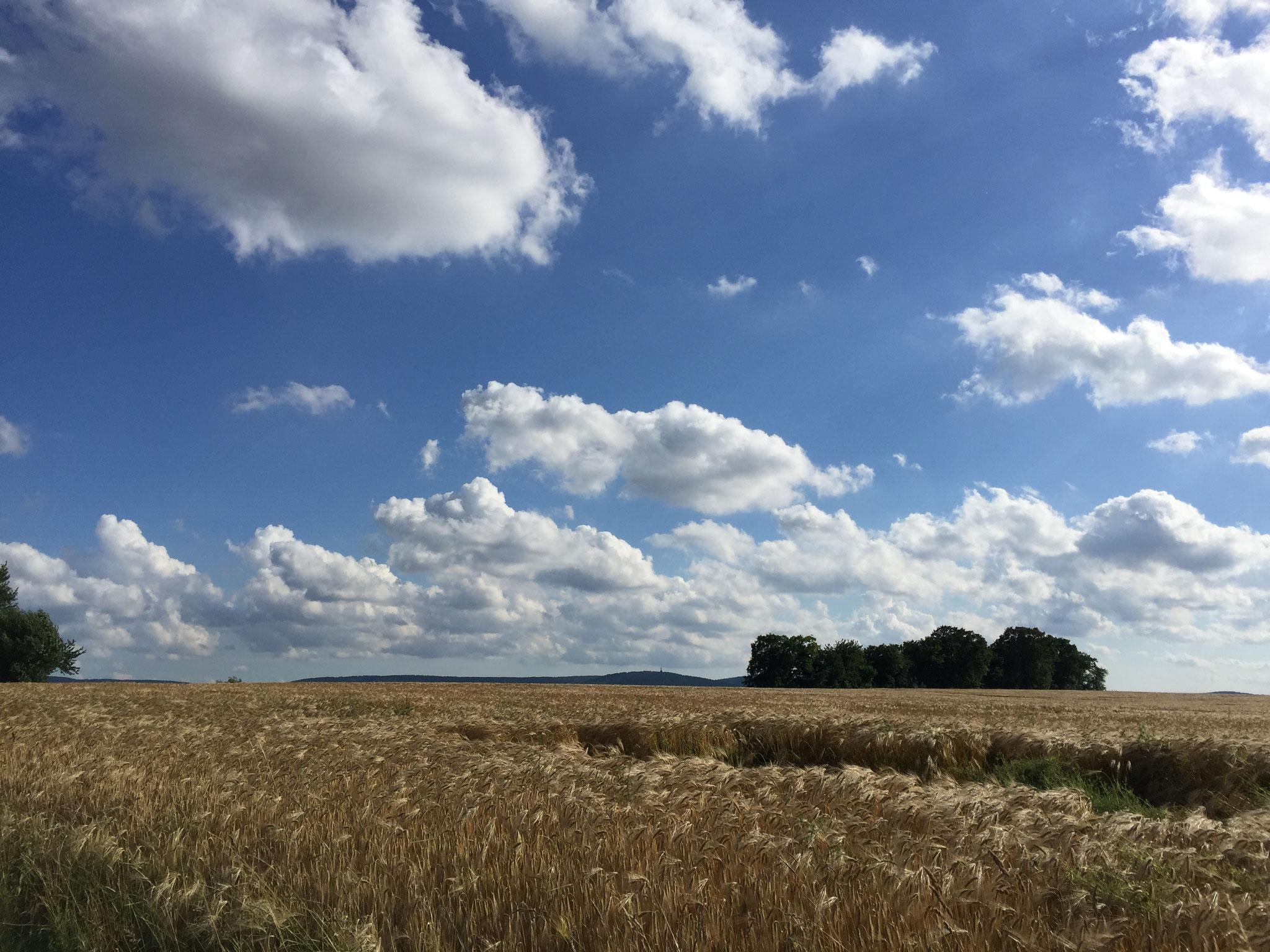 Lippische Landschaft