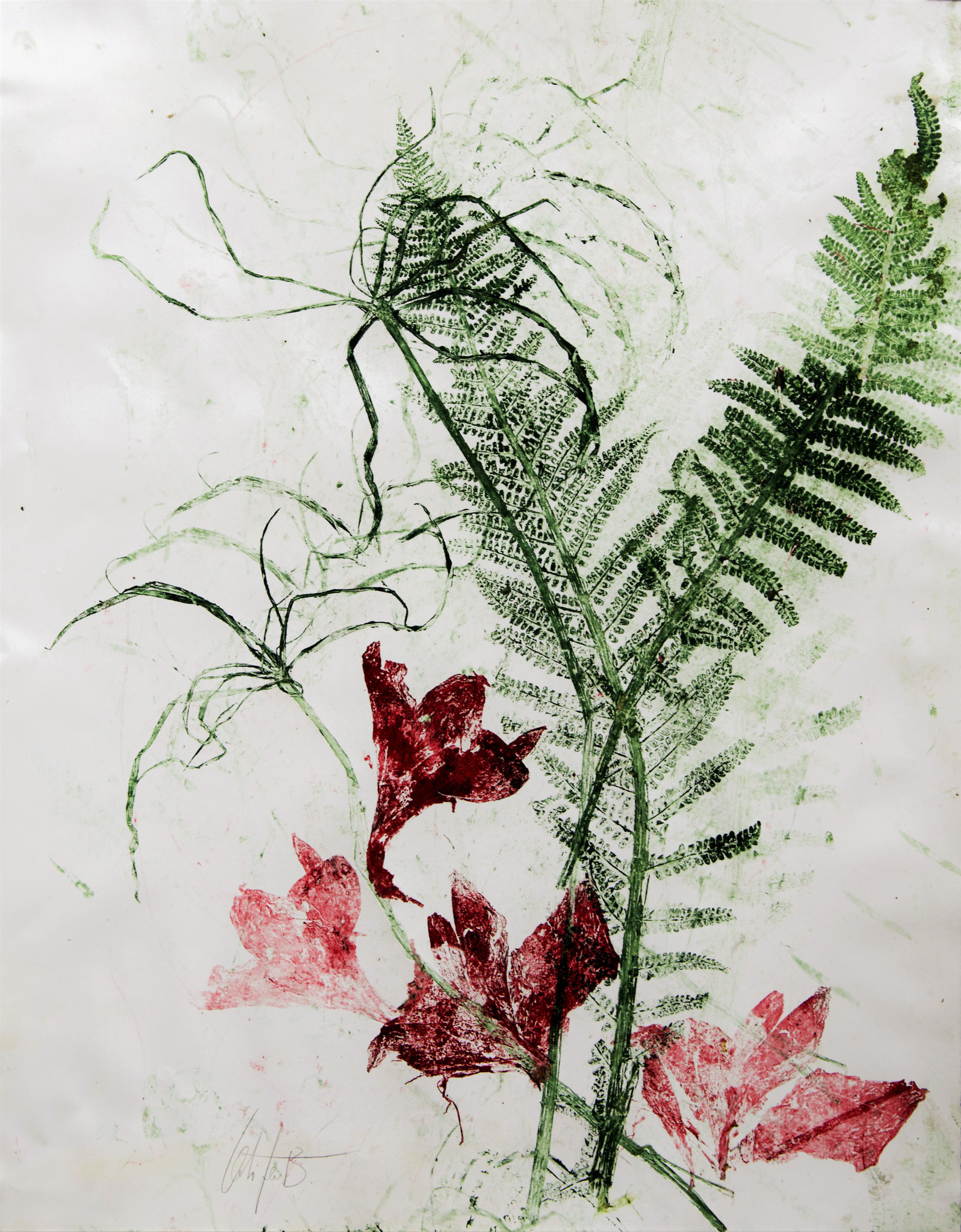 Monotype Latifa Bermes
