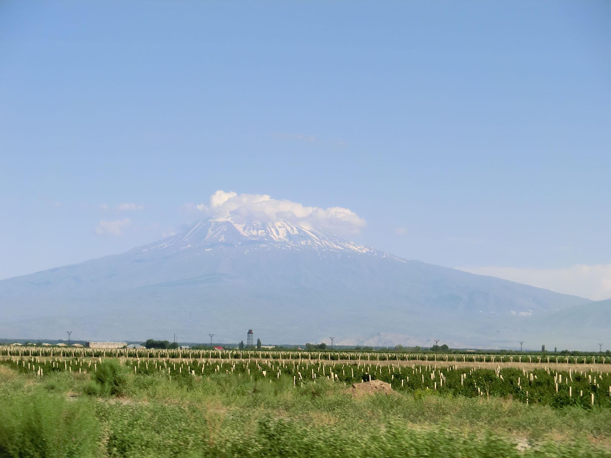 Ararat mit Wolkenbart
