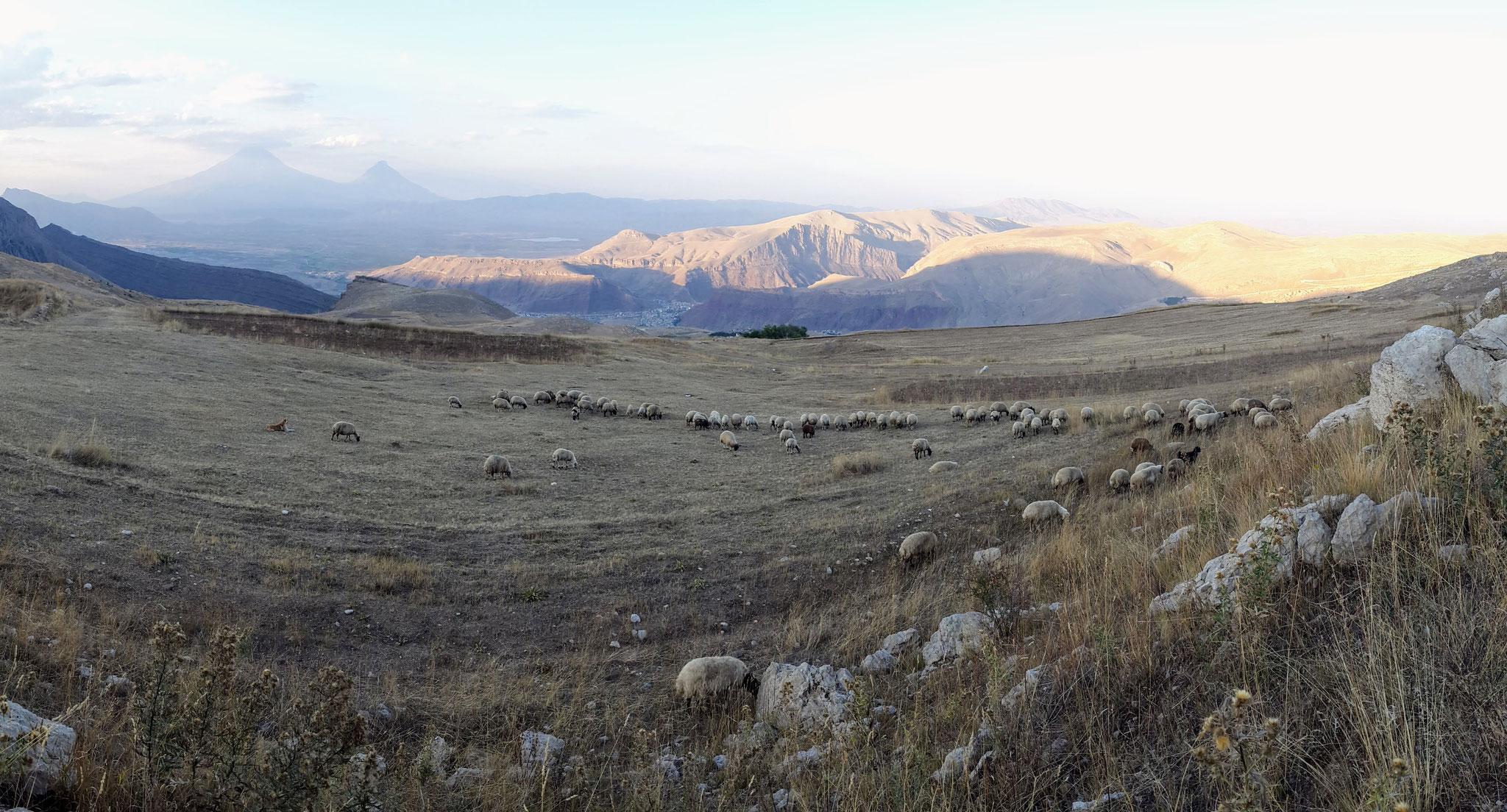 Blick auf den Ararat von der iranischen Seite aus