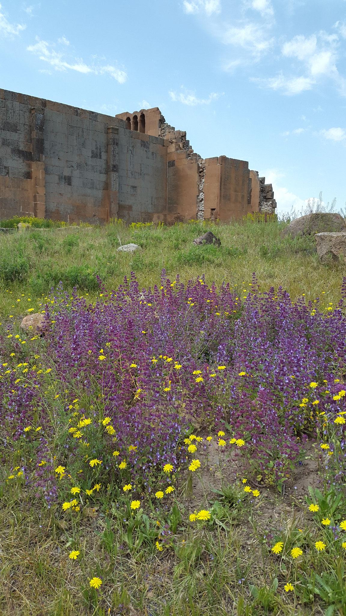 Ruine Yereruyk