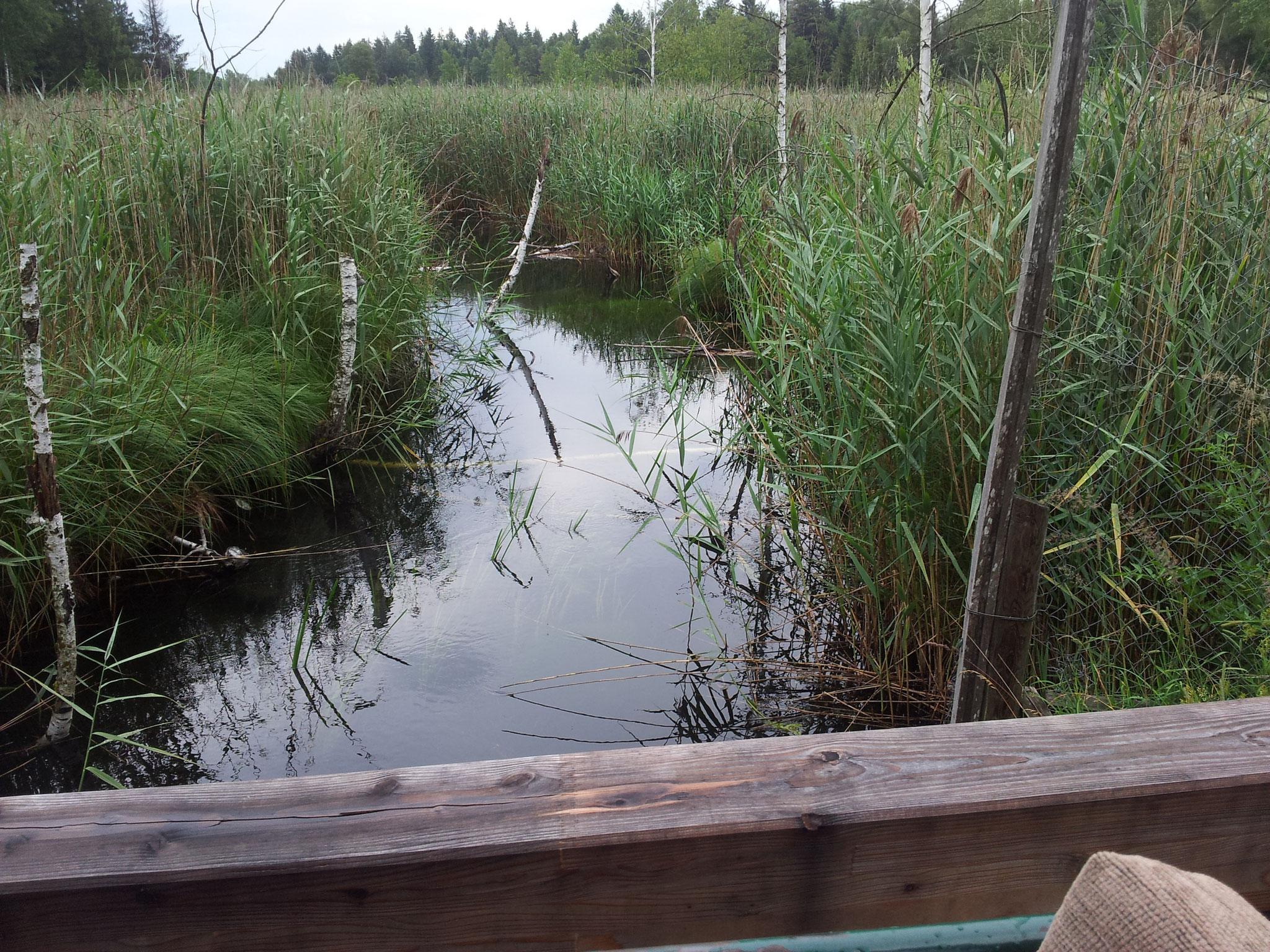 Entwässerungsgrafen für Torfgewinnung
