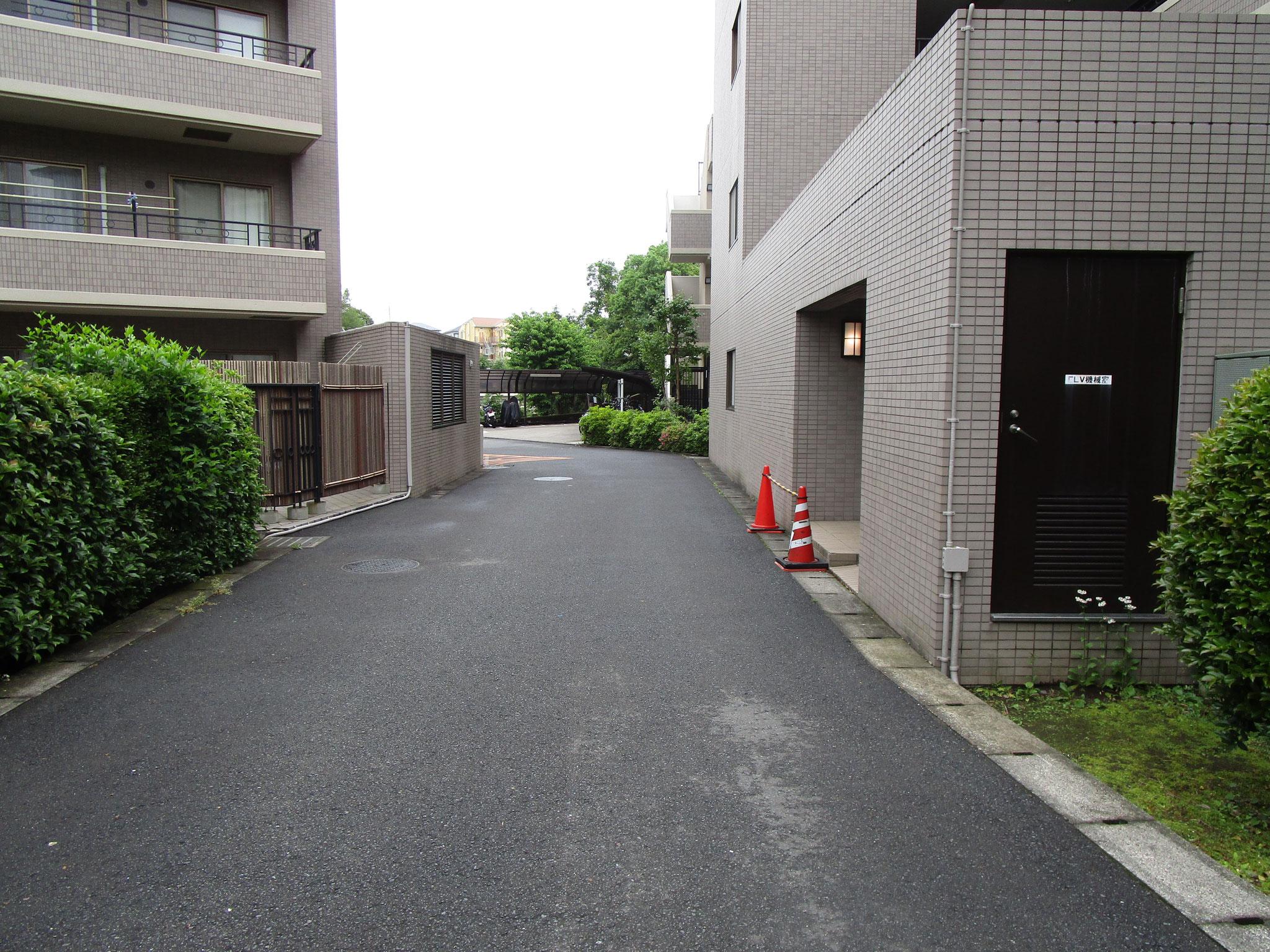 敷地内の道路。広いです