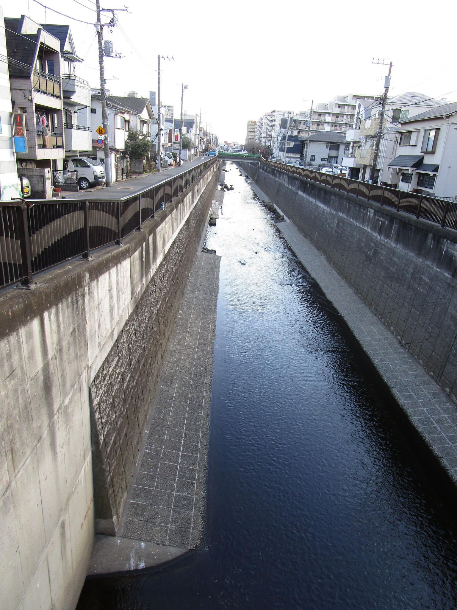 マンション近くの「根方橋」からの呑川