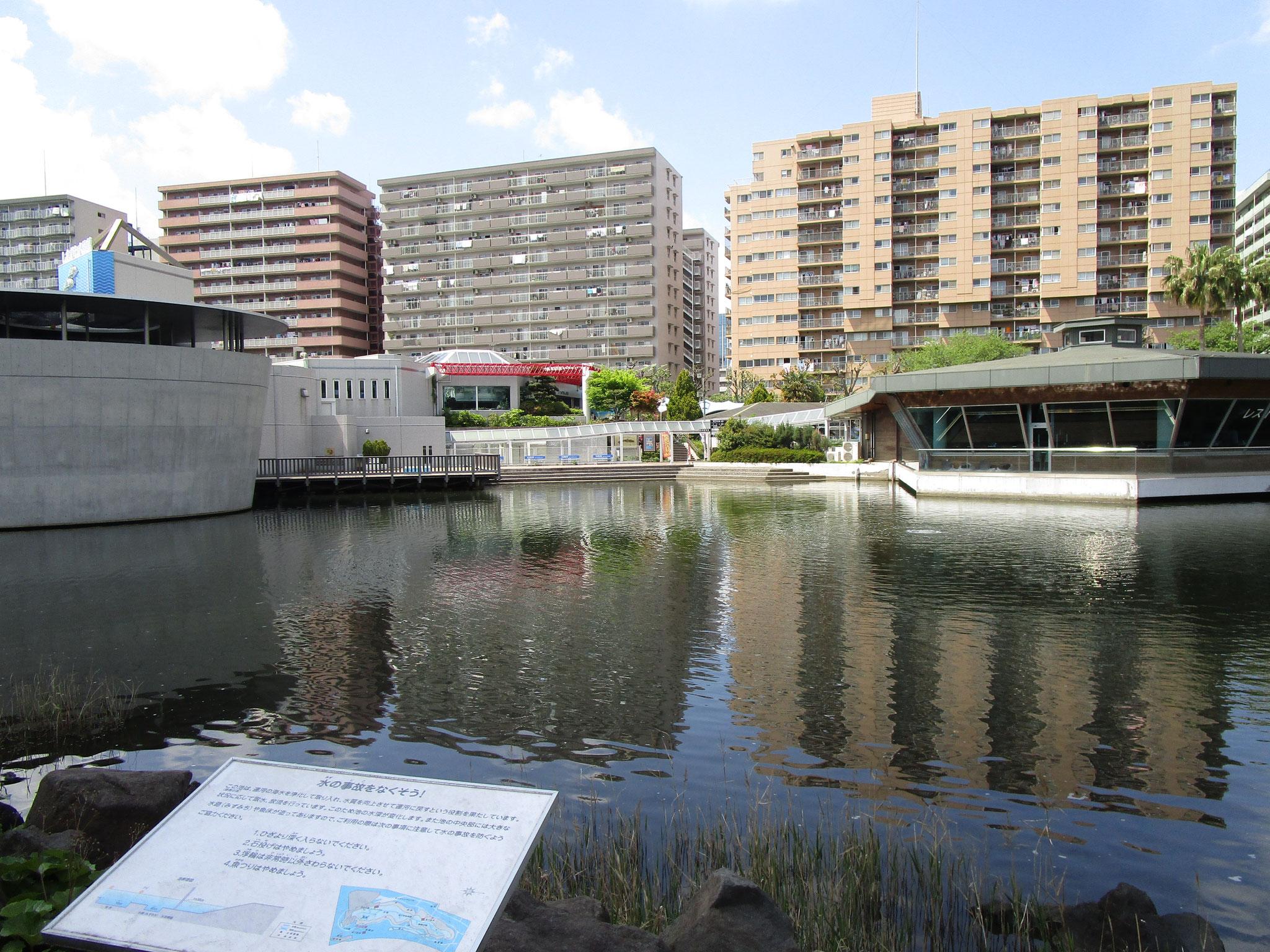 水族館とレストハウス。「勝島の海」の側からの眺め