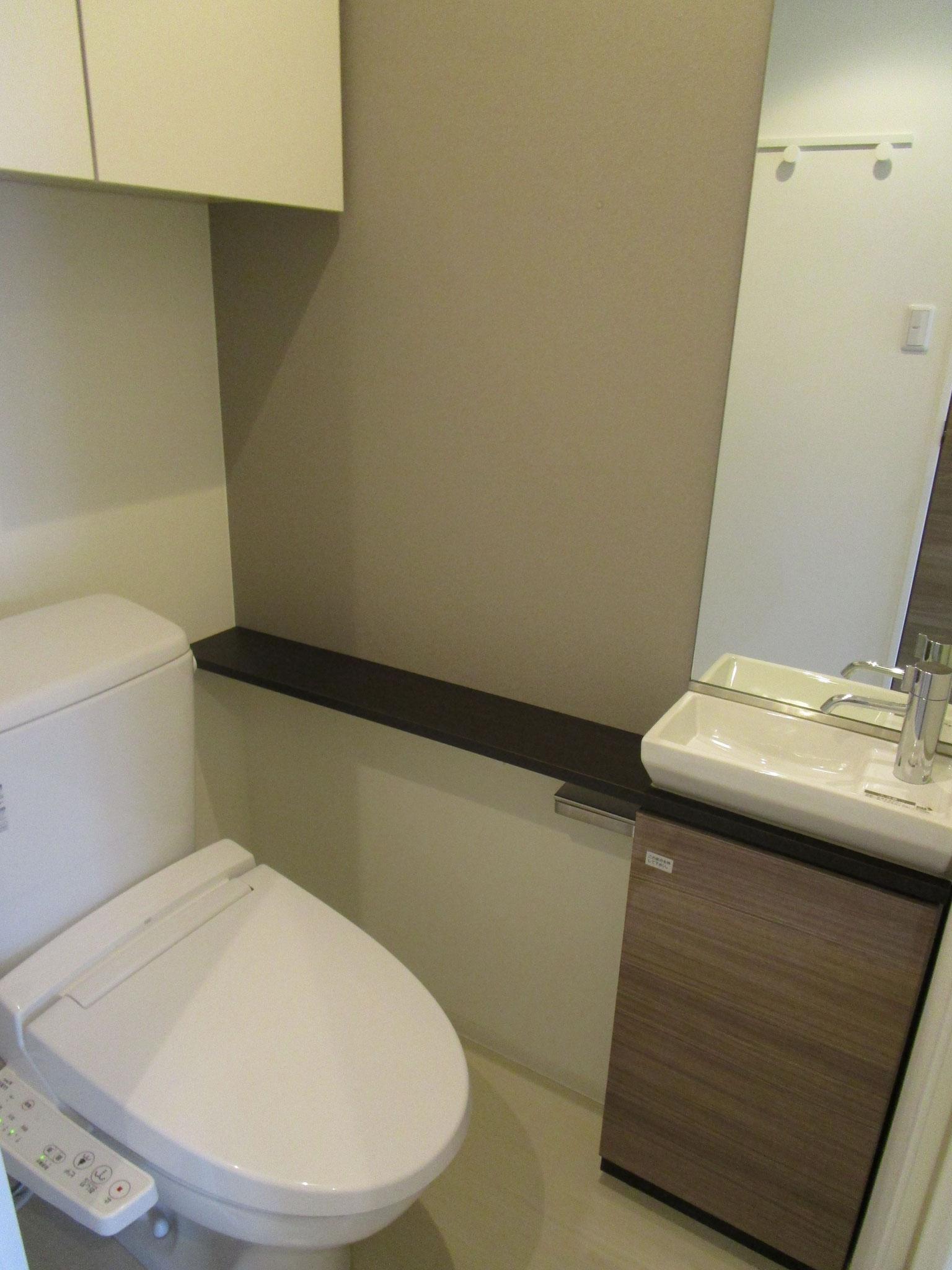 玄関を入って廊下の左側のトイレ。手洗い・カウンター・鏡付き