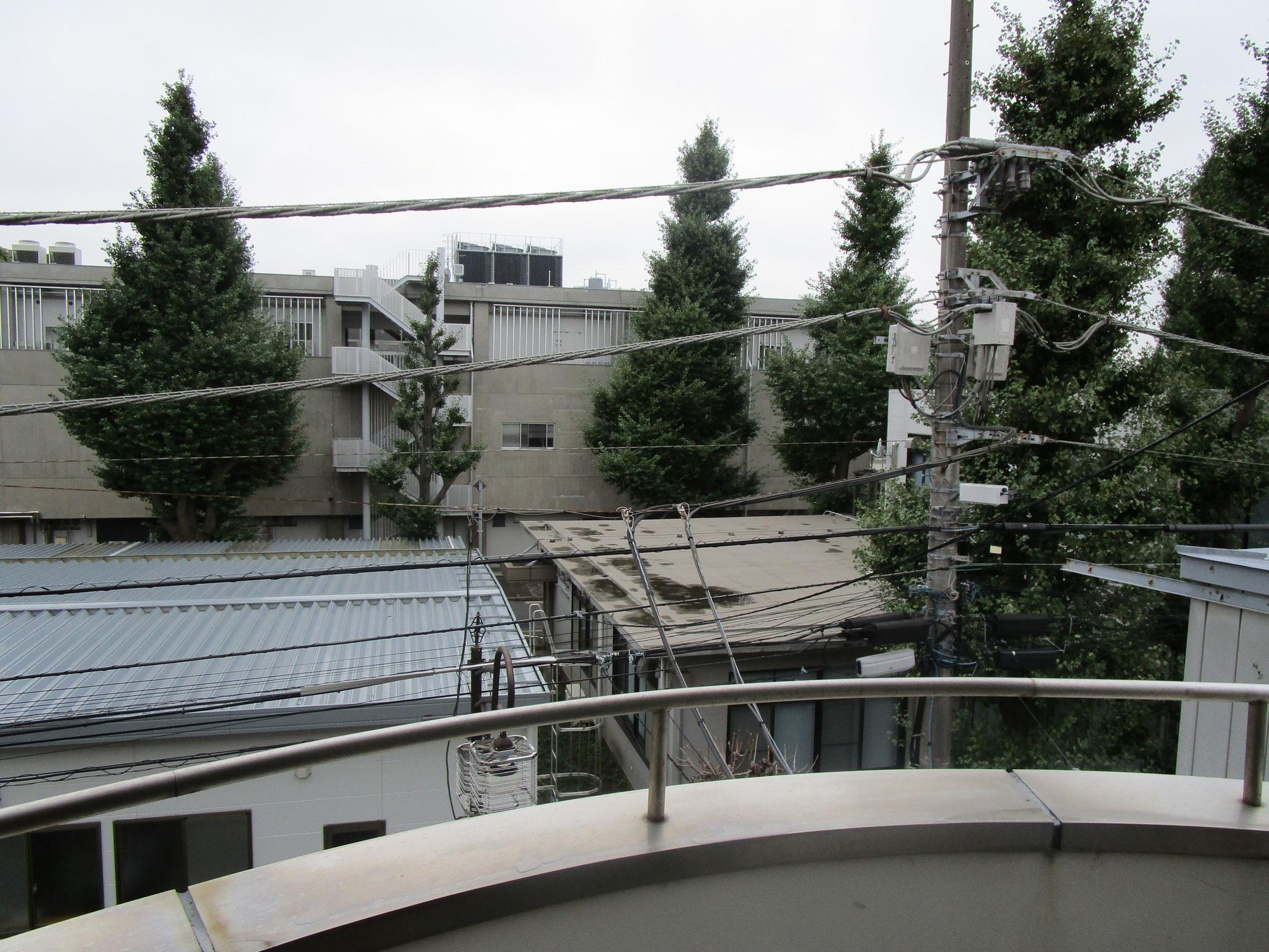 西側バルコニーからの眺望(向かいは東京工業大学のキャンパスです)