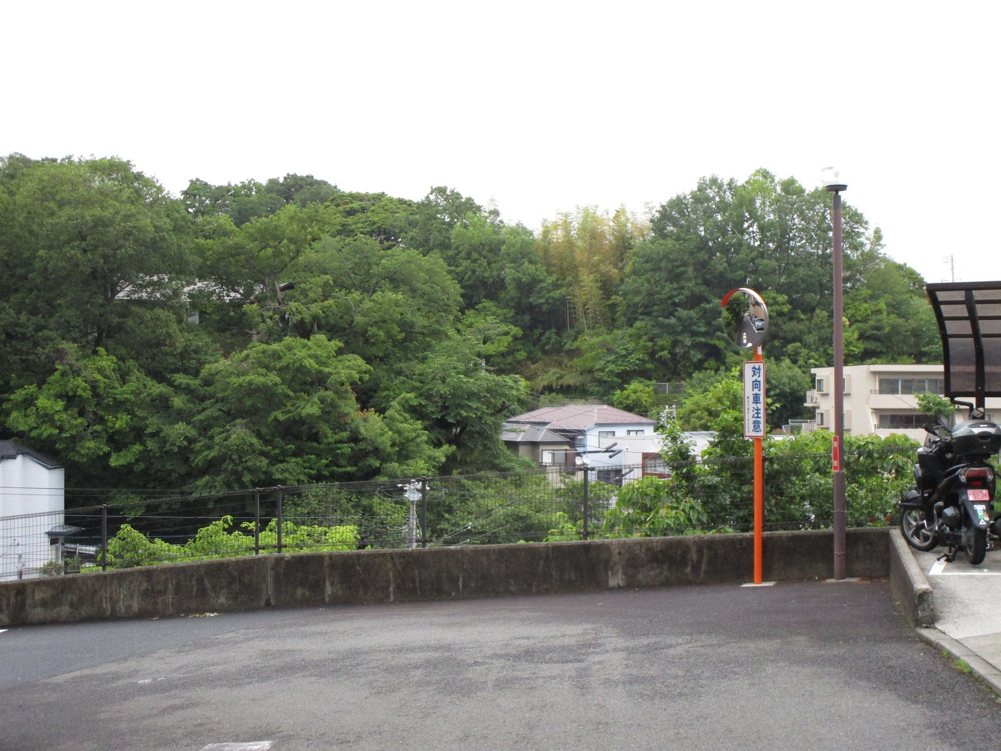 駐輪場入口付近からの眺望