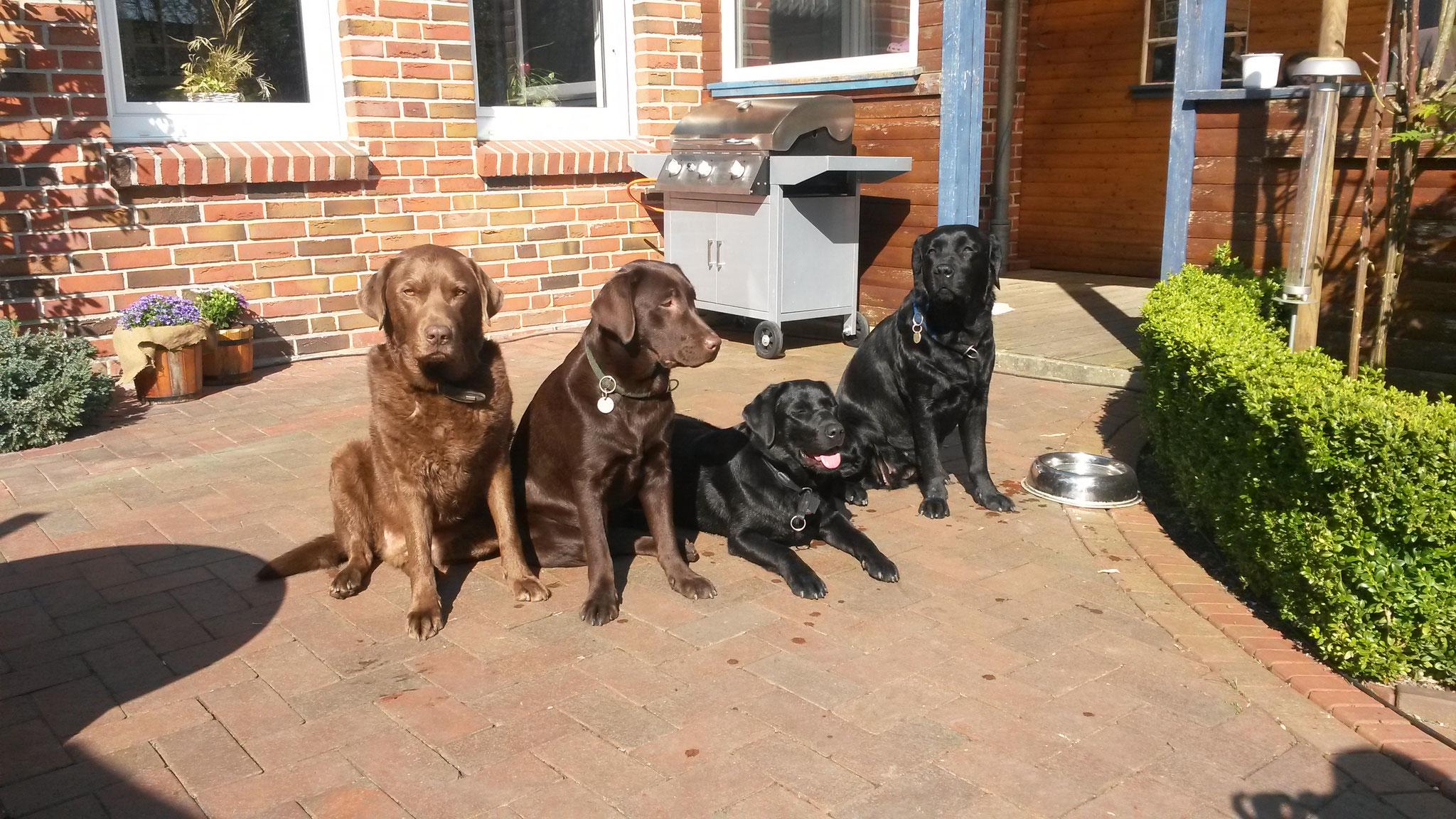 Diego, Emmas Schwester Emmy, Emma und Emmas Mama Nelly