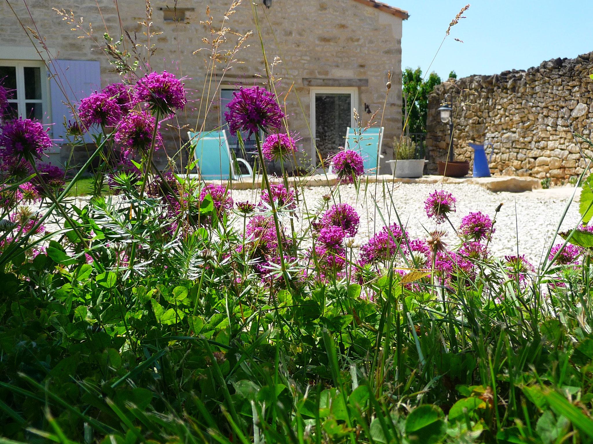 Gîte La Ponne, jardin, parking, terrasse