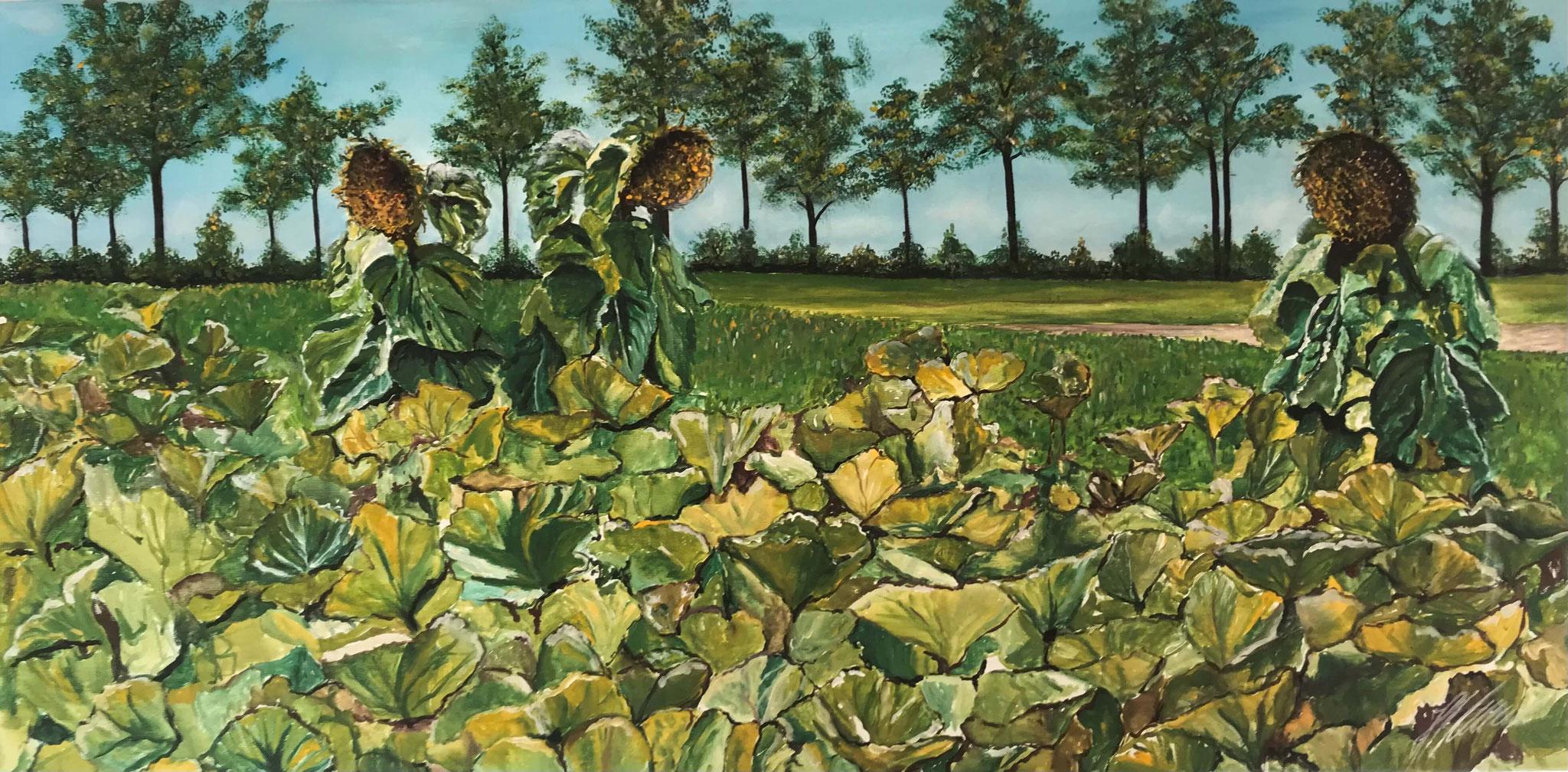 """""""Sonnenblumenfeld"""" Acryl auf Leinwand 50 x 100 cm."""