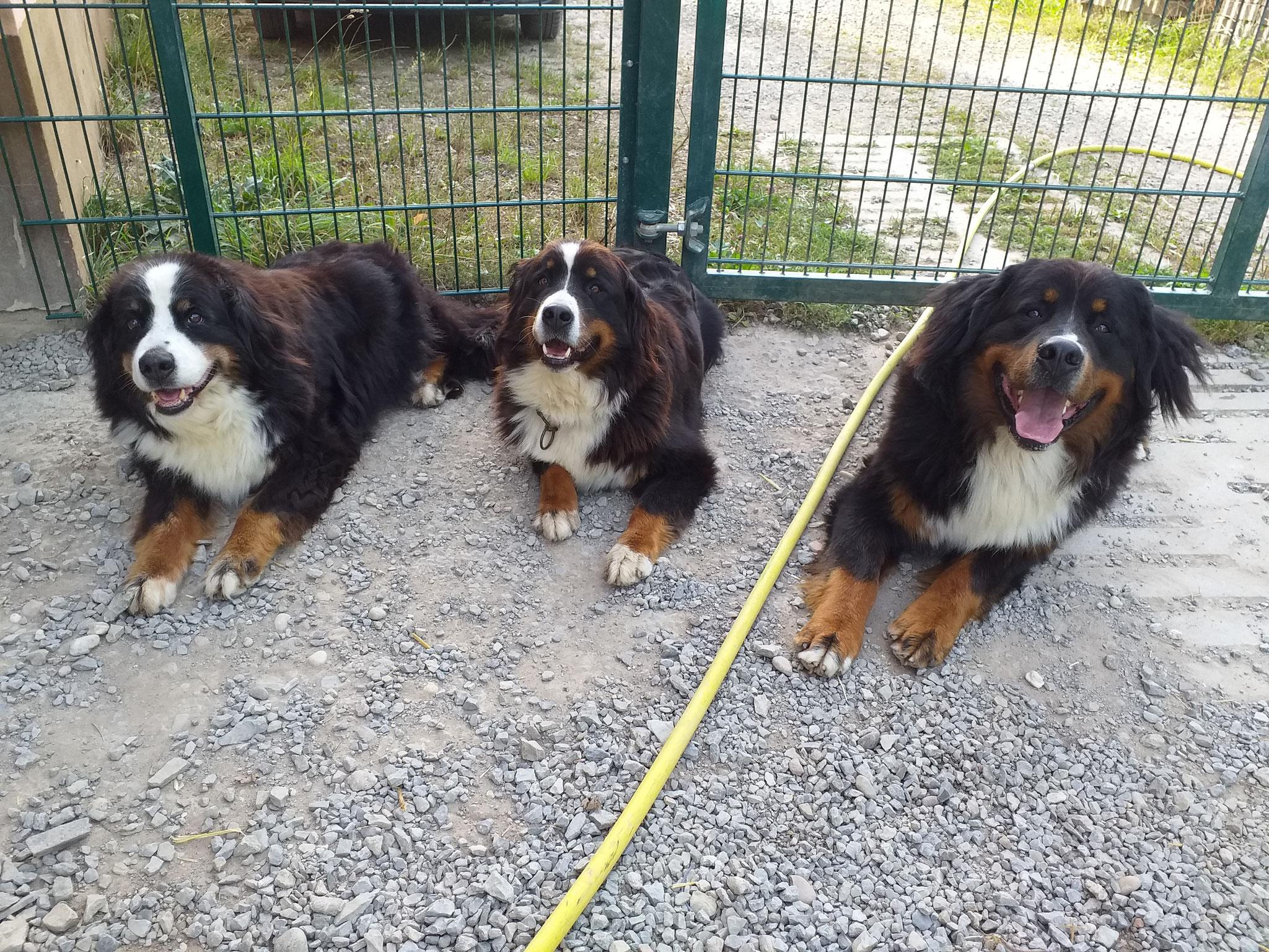 Drei Generationen, v.l.n.r. Irma (Oma), Alisia (Mutter), Django (Sohn)