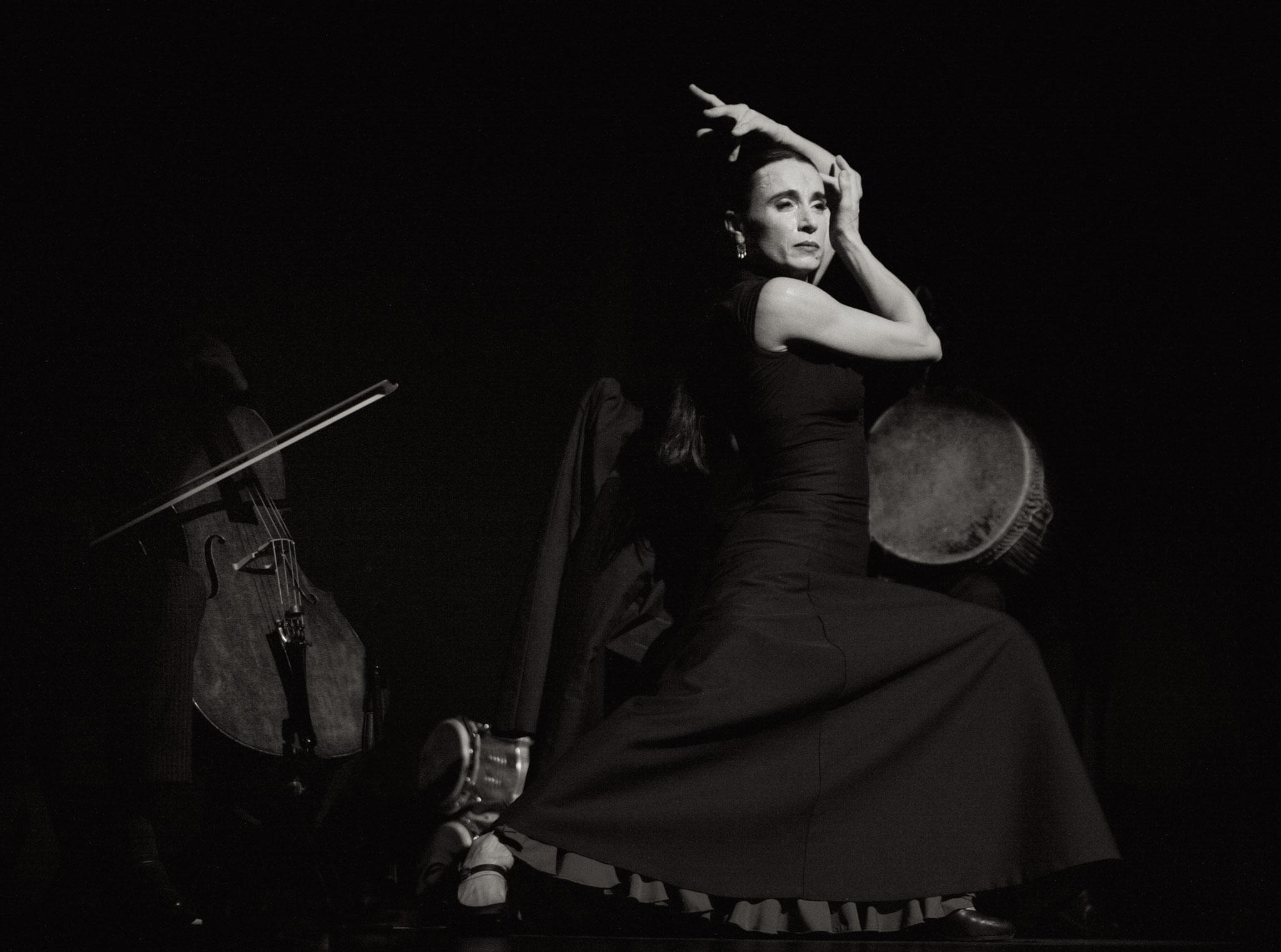 Gisa Flamenco