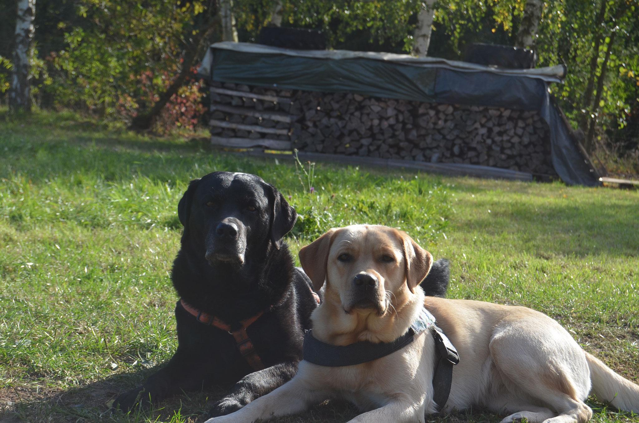 Nellie und Snoopy