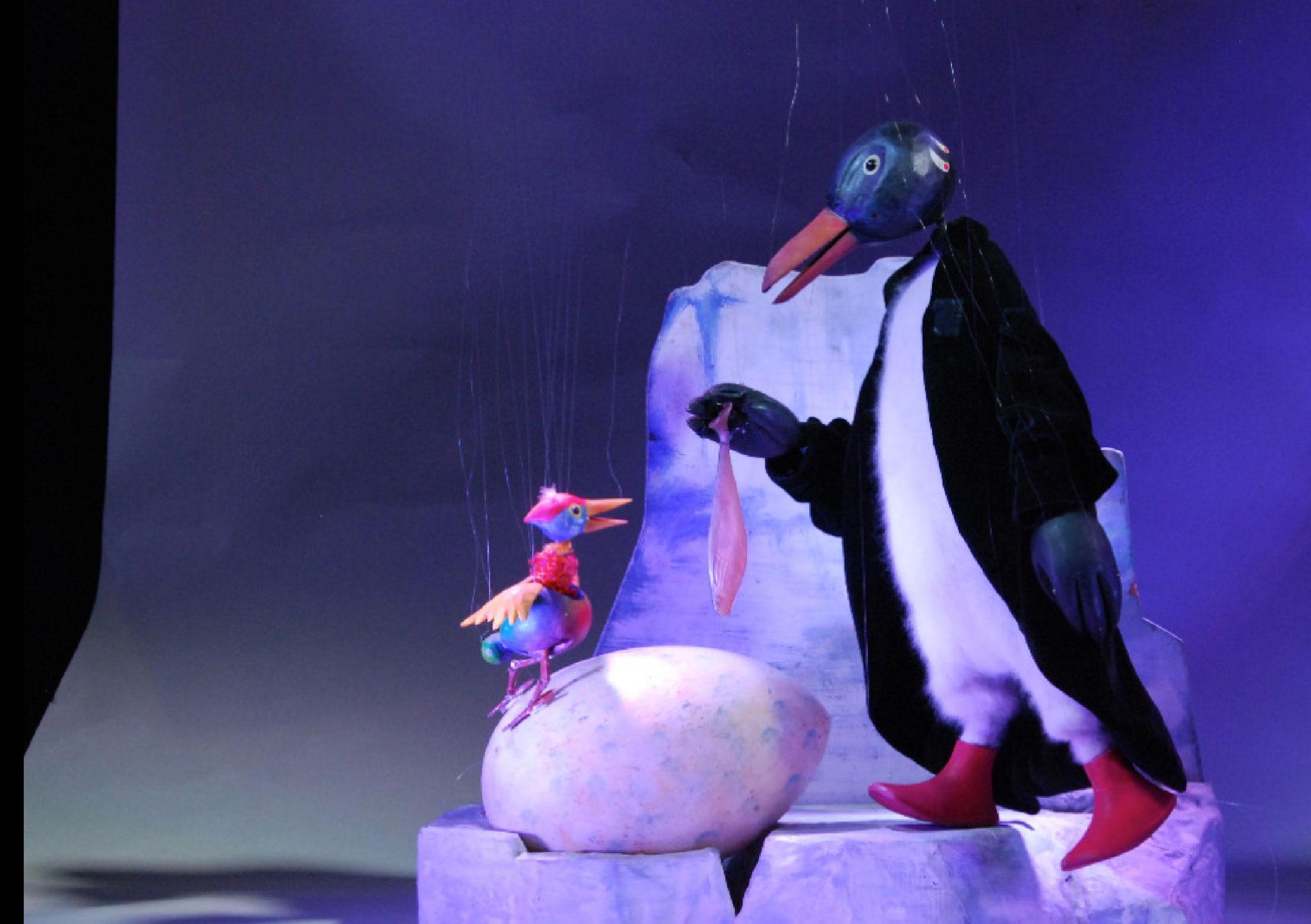 ...in der Antarktis einen Pinguin, der gerade einen Kakadu ausbrütet,...