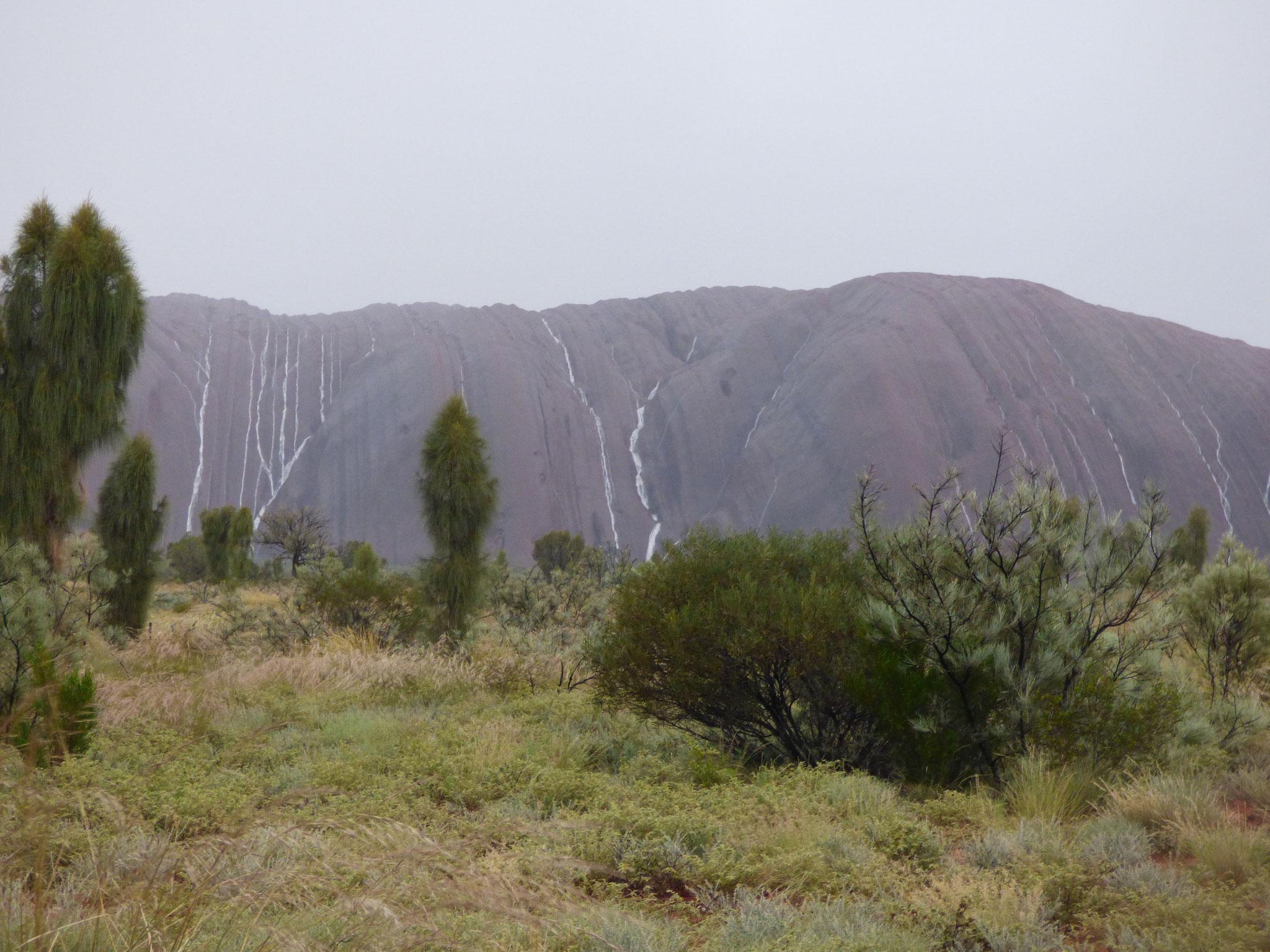 Uluru bei Regen bilden sich zahlreiche Wasserfälle