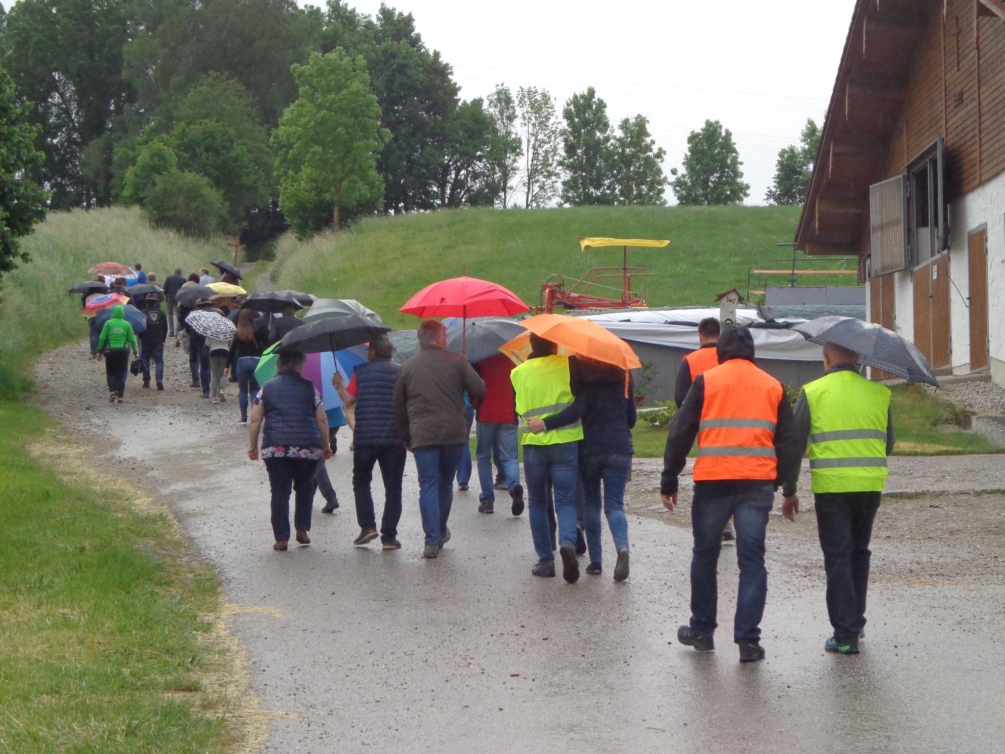 Rückmarsch zum Holzkarrer bei Regen