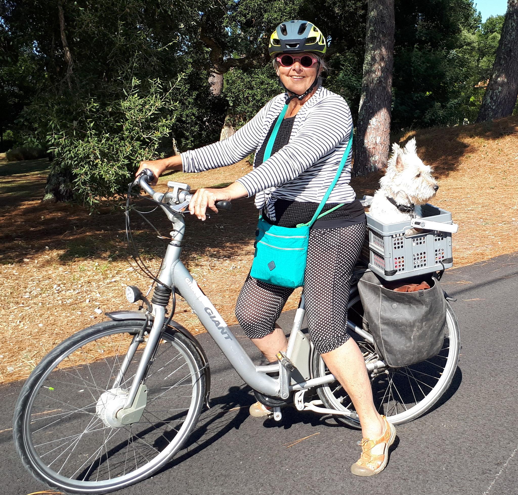 Lenny , le tout terrain , en calèche ou à vélo , inséparables