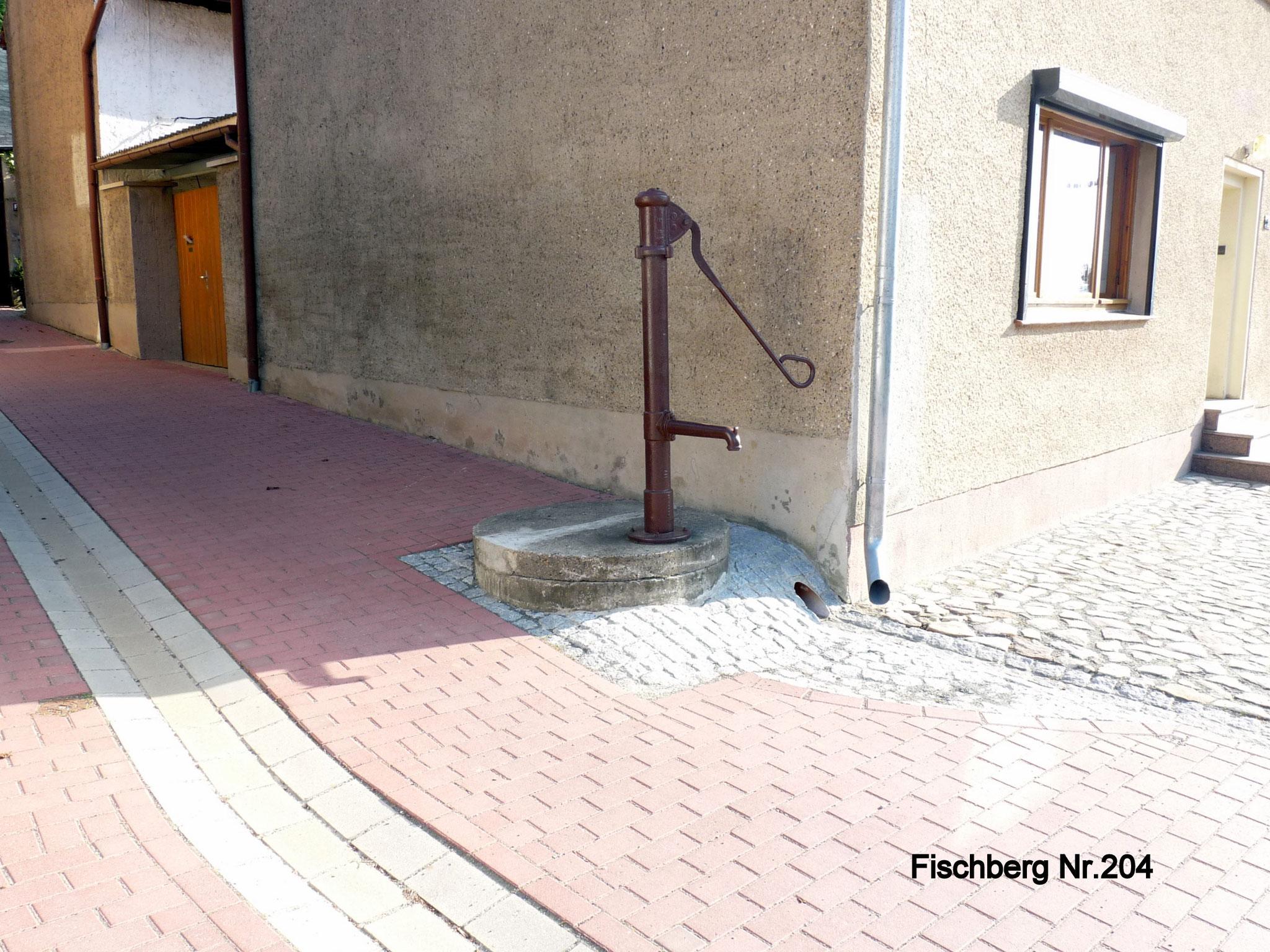 Fischberg 204
