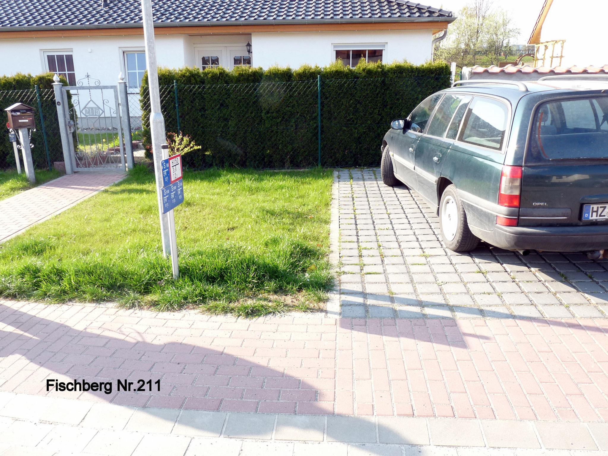 Fischberg 211