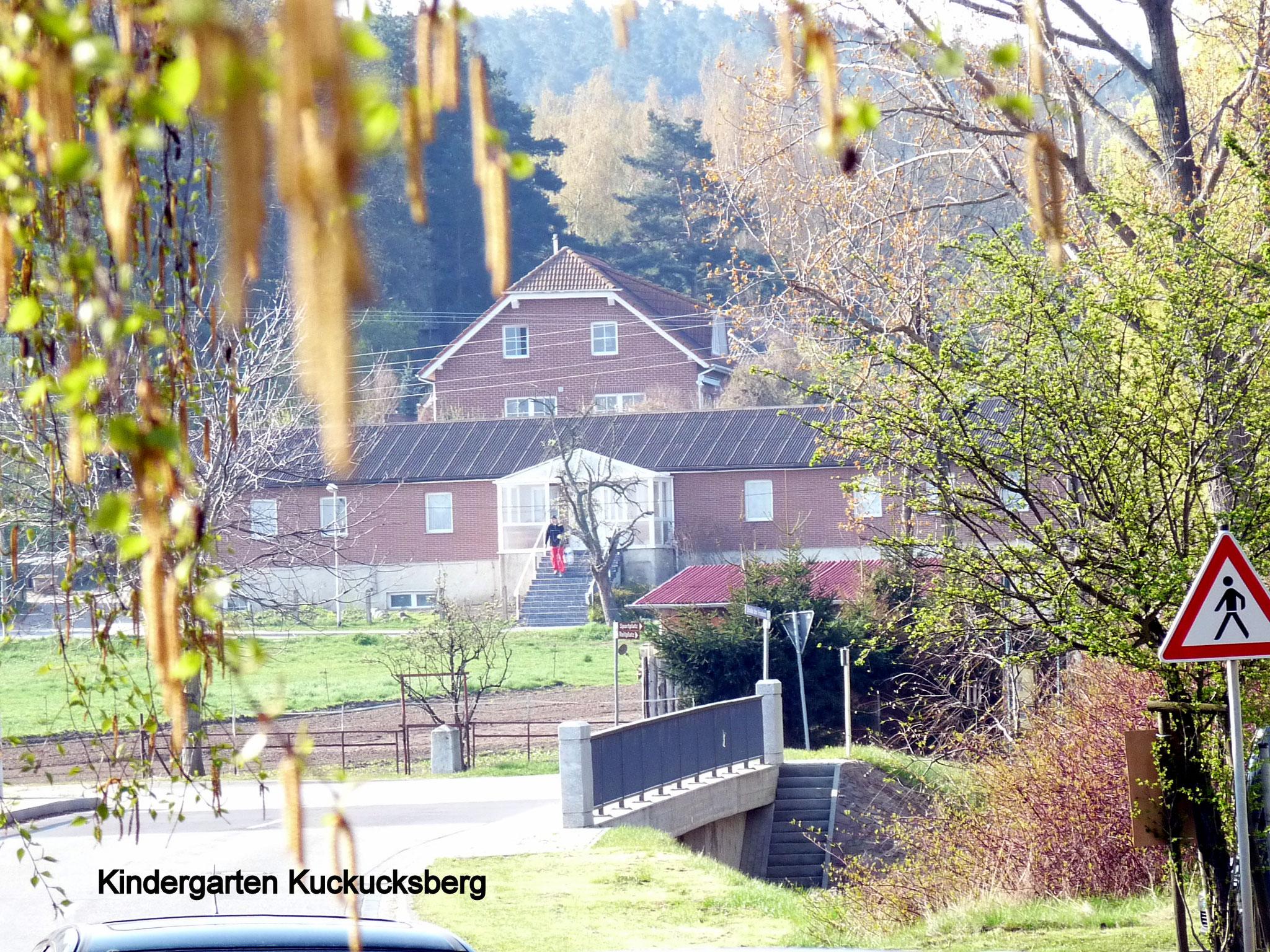 KIndergarten Kuckucksberg
