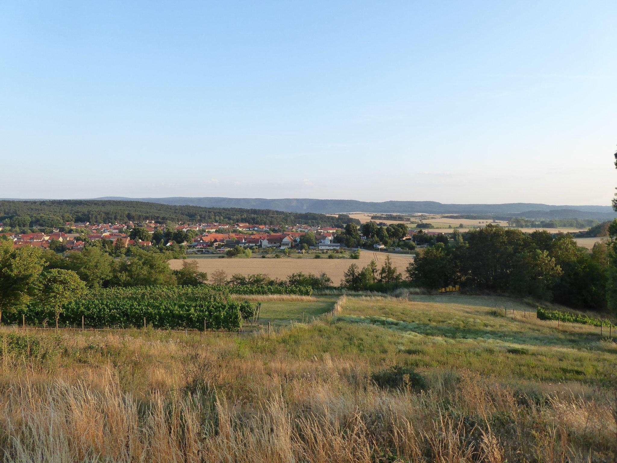 Blick über Westerhausen