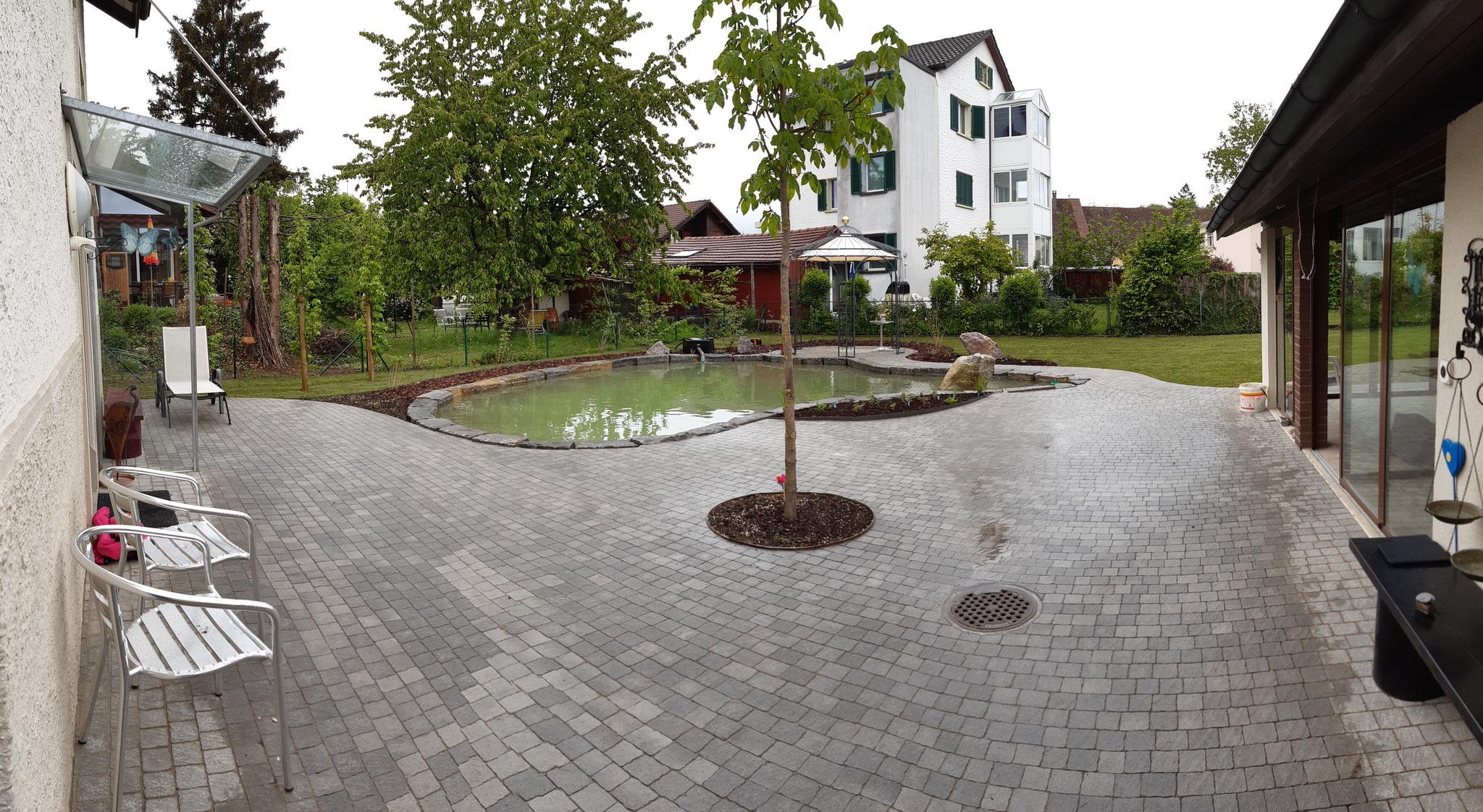 Teichanlage mit Garten, Buchs AG