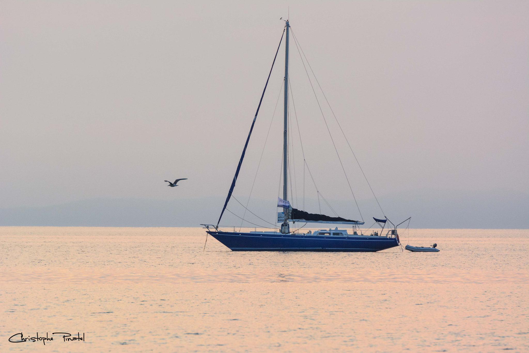 Photo 4 - Douceur marine