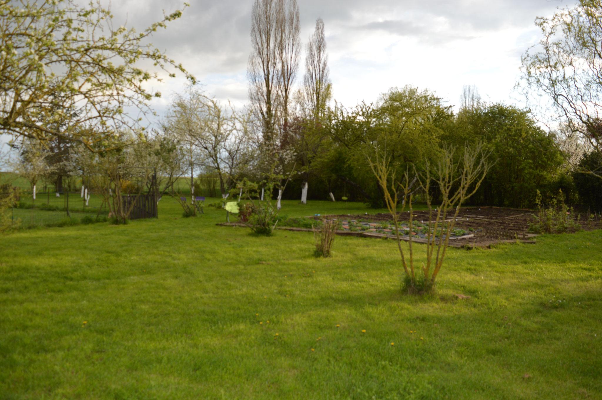 Notre jardin