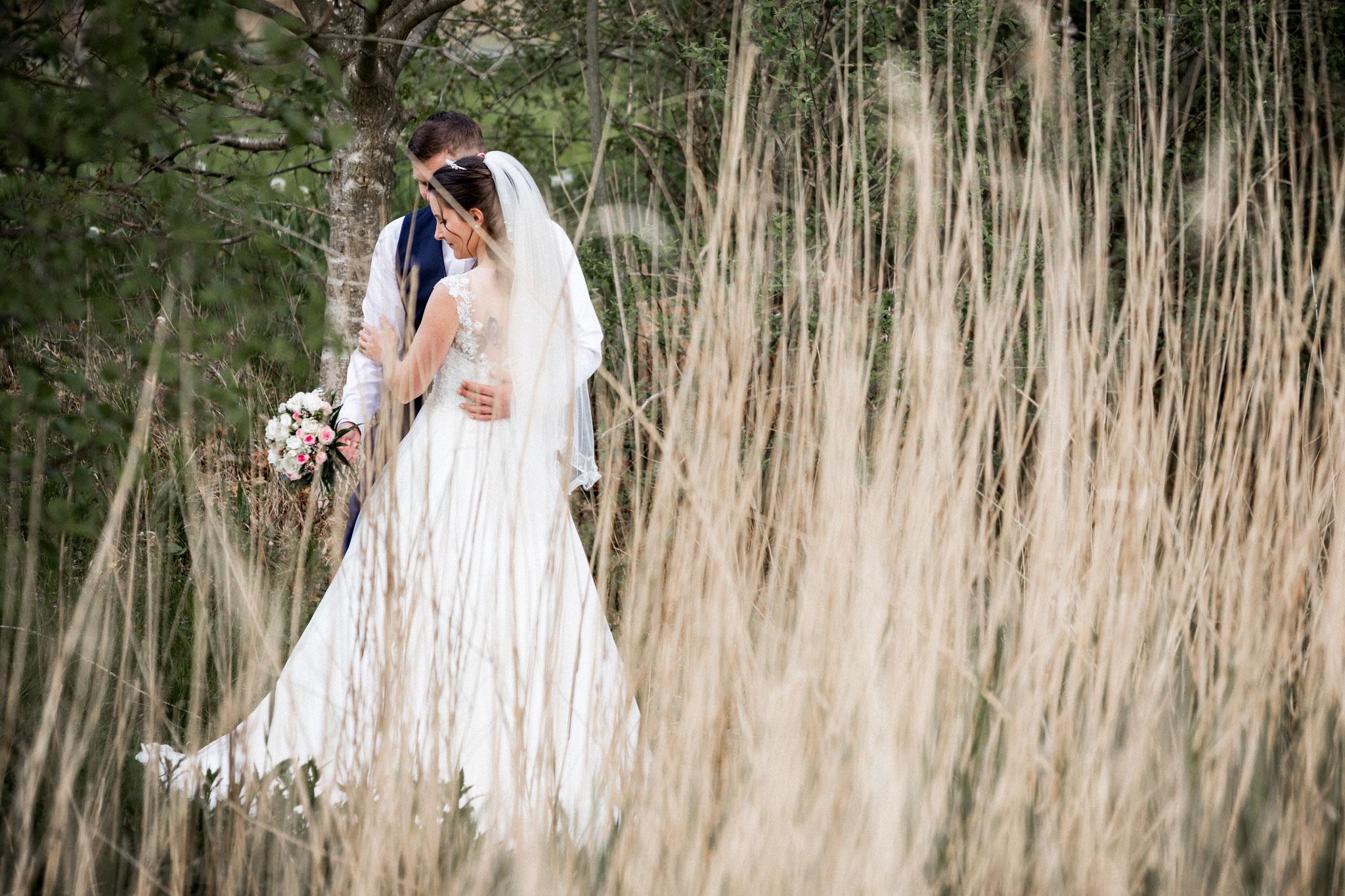 Brautpaar im Schilf