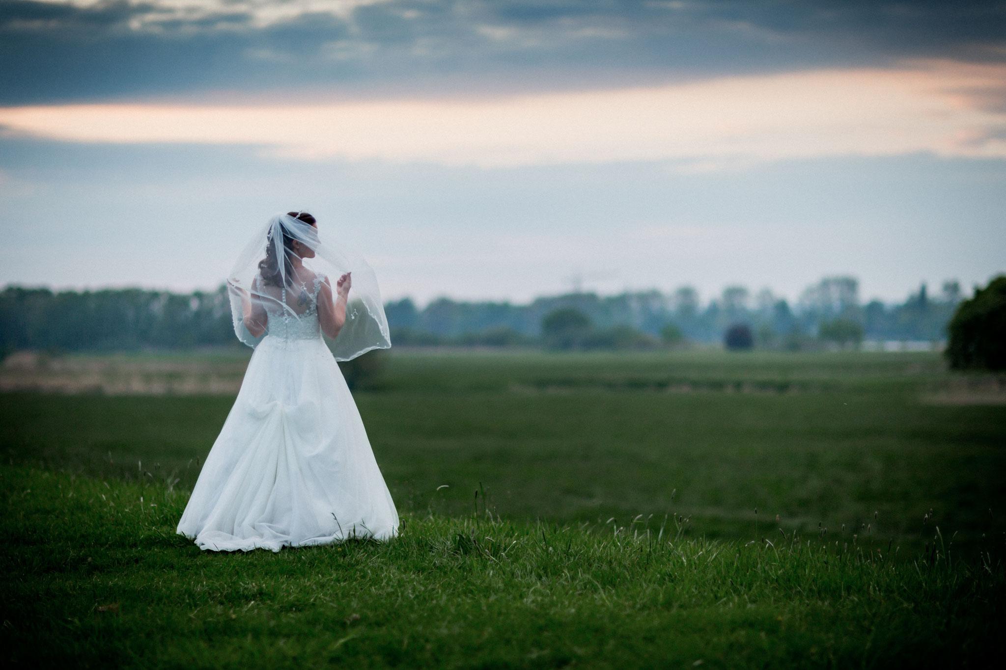 Brautpaar am Deich beim Sonnenuntergang