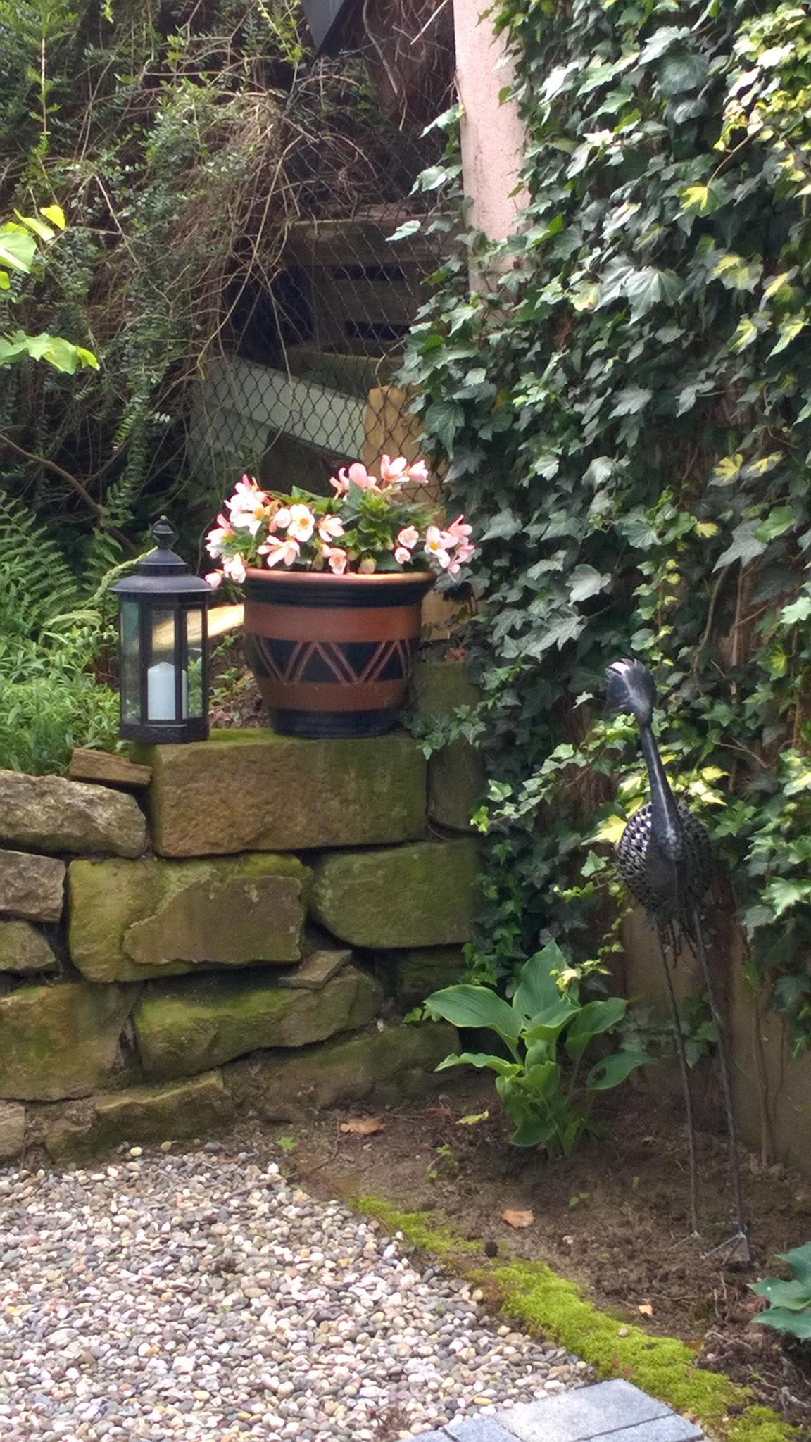 Gartenblick/ Garden view