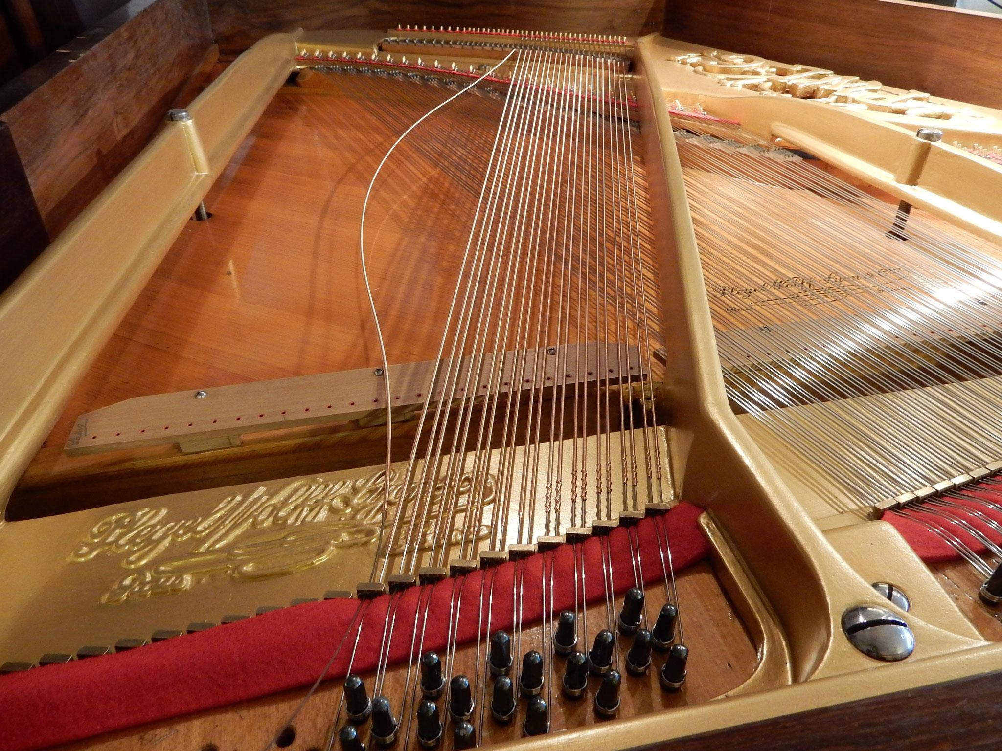 Après re-fabrication des cordes basses sur mesure par Mr Carrère, la pose des cordes