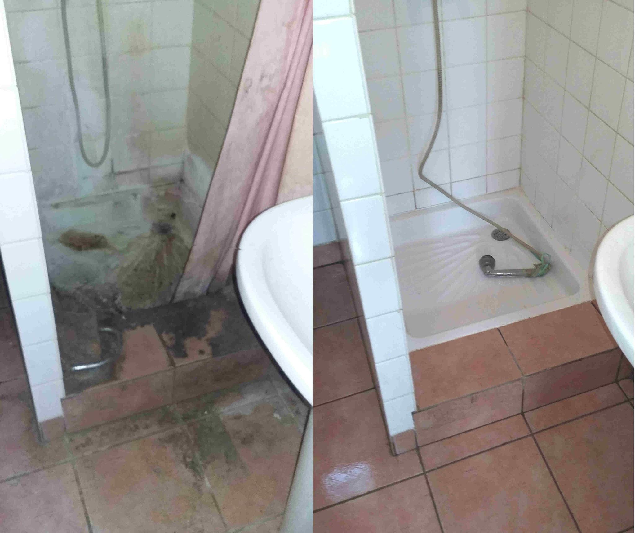 Détartrage de douches