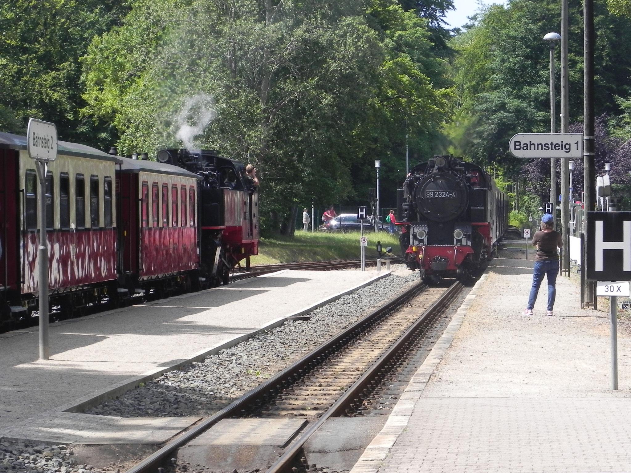 Von Schmalspurbahn über U-Bahn, S-Bahn, Bus und Schiff haben wir alle Öffis ausprobiert.