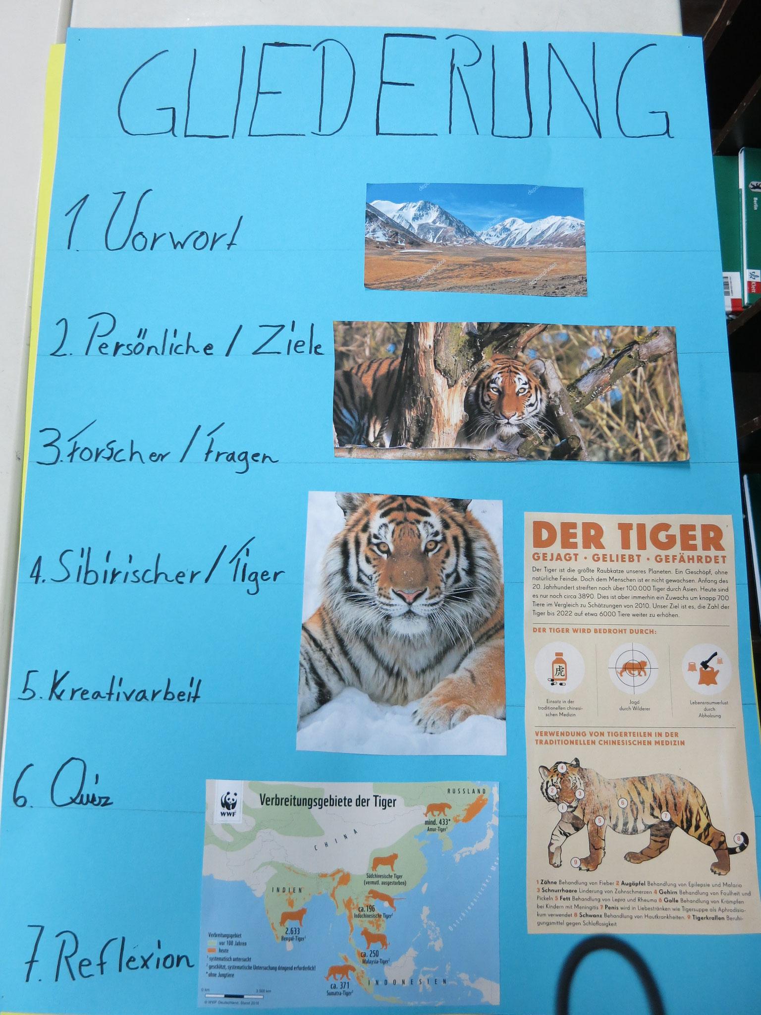 Tiger in Sibieren