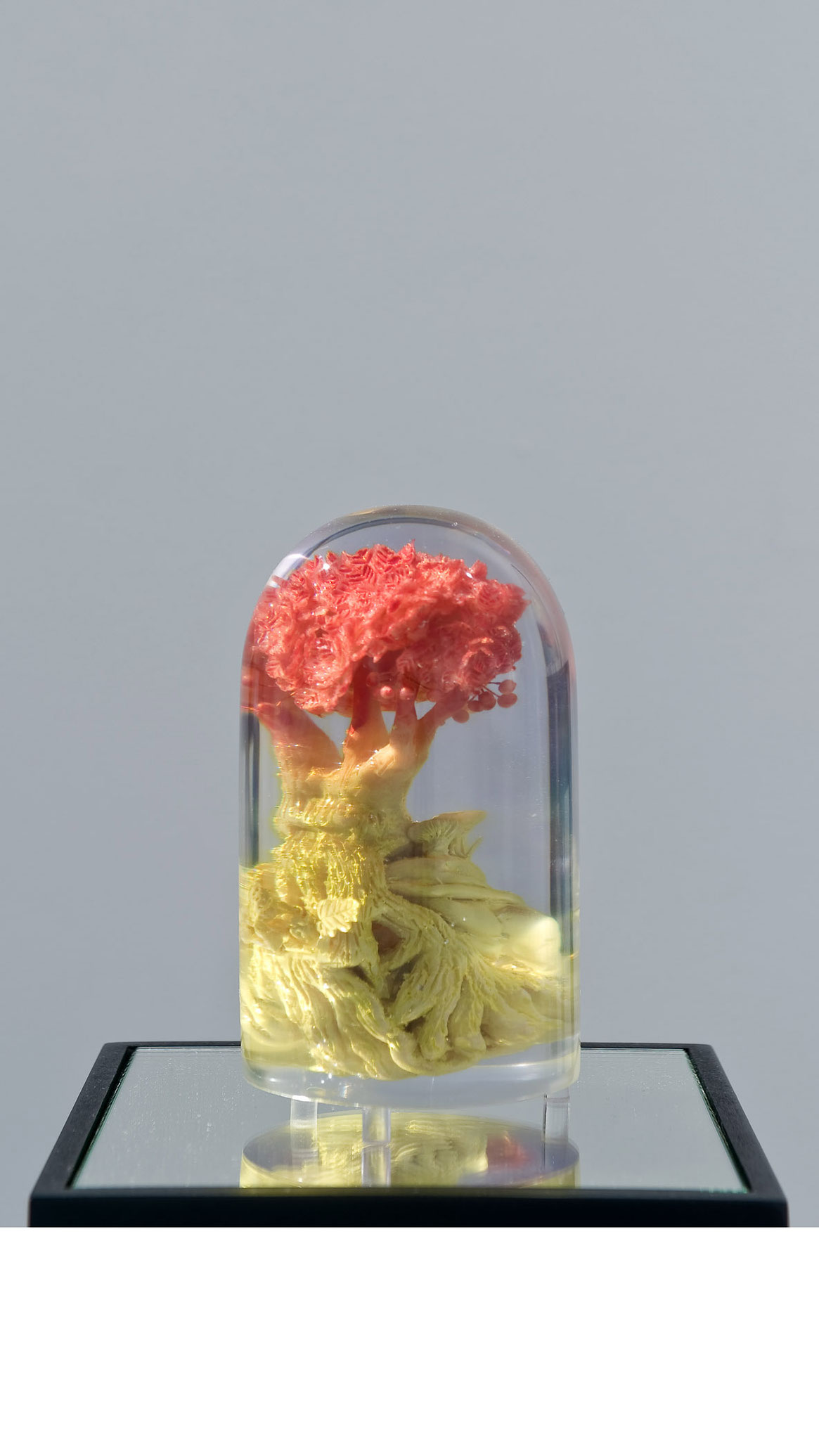 Landor (small version), polymer, polymeric resin, 2016 (Photo: Andreas Baudisch, Galerie Gerken, Berlin)
