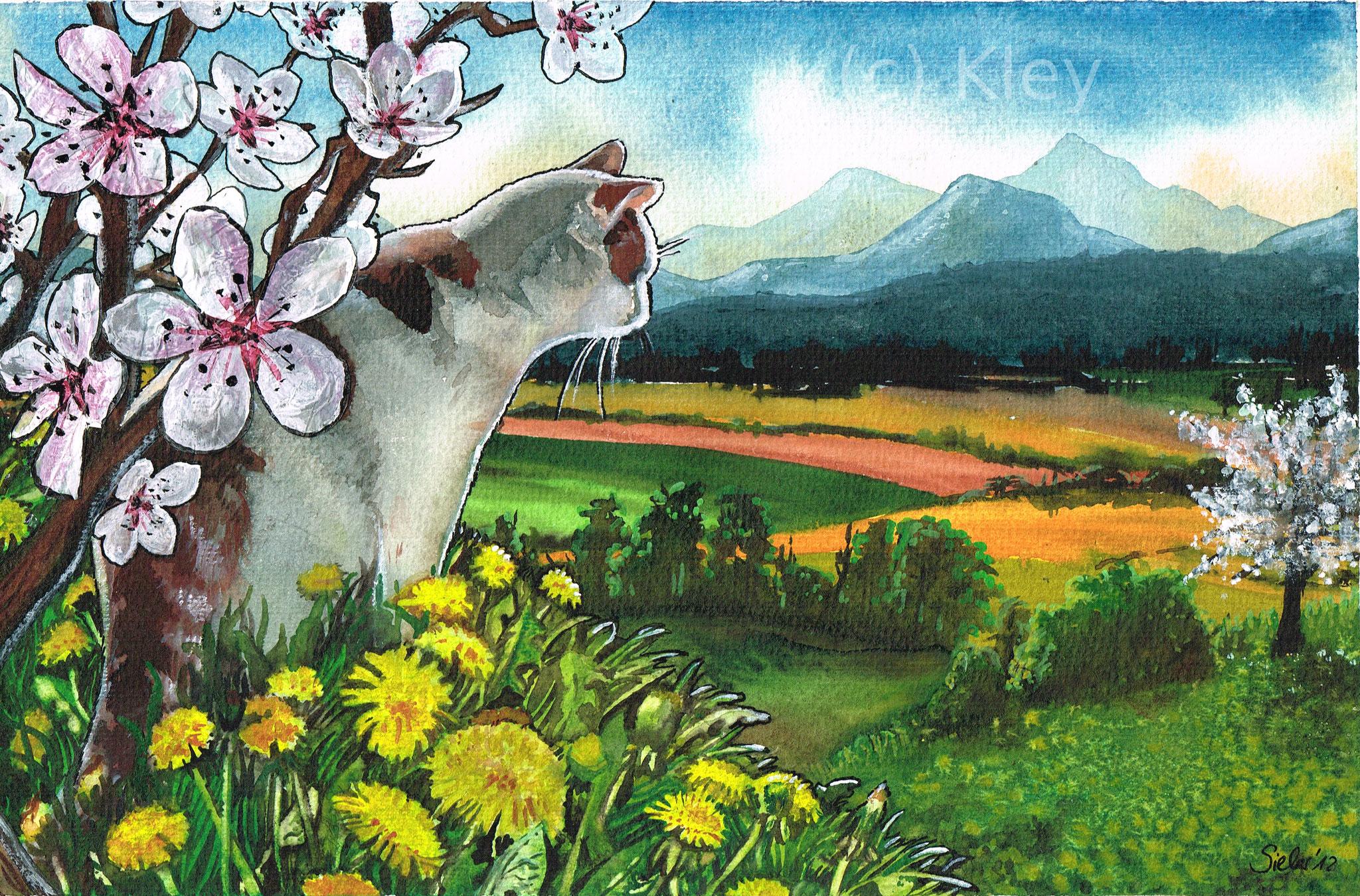 """""""Katze mit Kirschblüten"""" Collage Aquarell 19x29cm"""