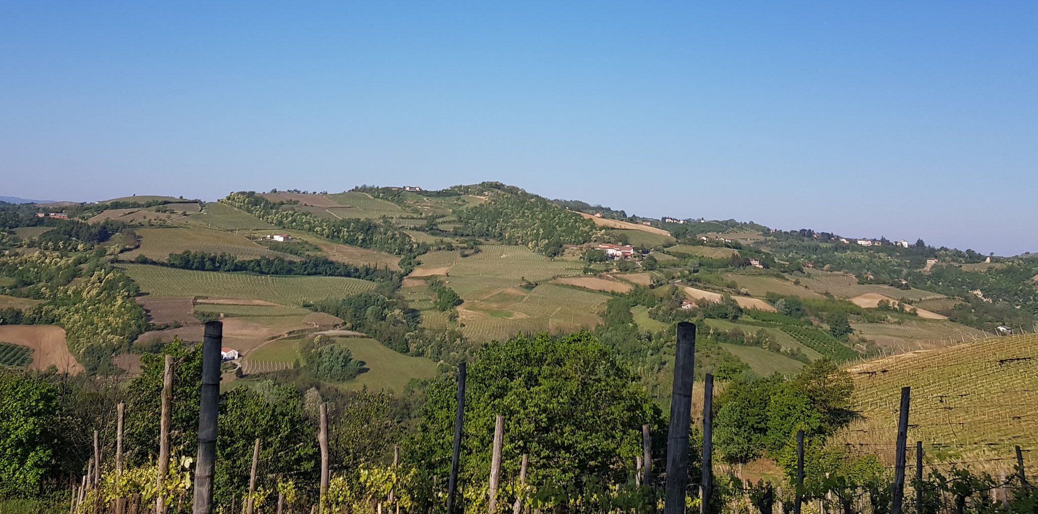 Der Hügel von Montabone. Das war während der Ausgangssperre ein verbotener Ausflug.