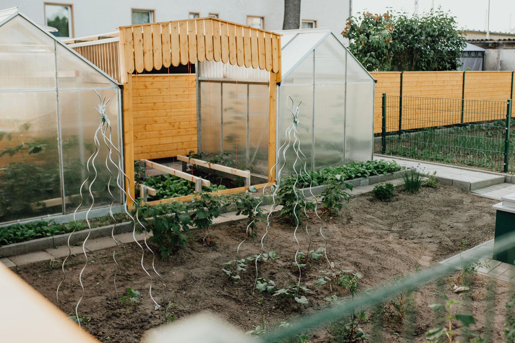 """Schulgarten: Durch unseren eigenen Schulgarten wollen wir Ihrem Kind den Zugang zu unseren Schwerpunkten """"Natur"""" und """"Gesundheit"""" ermöglichen."""